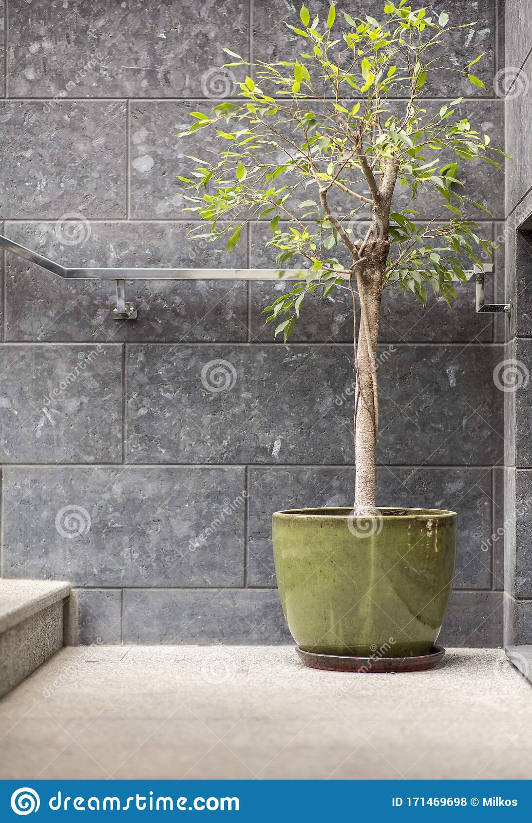 Exterior Architecture And Front Store Design Of Coffee Cafe Stock Photo Image Of Abstract Blurred 171469698