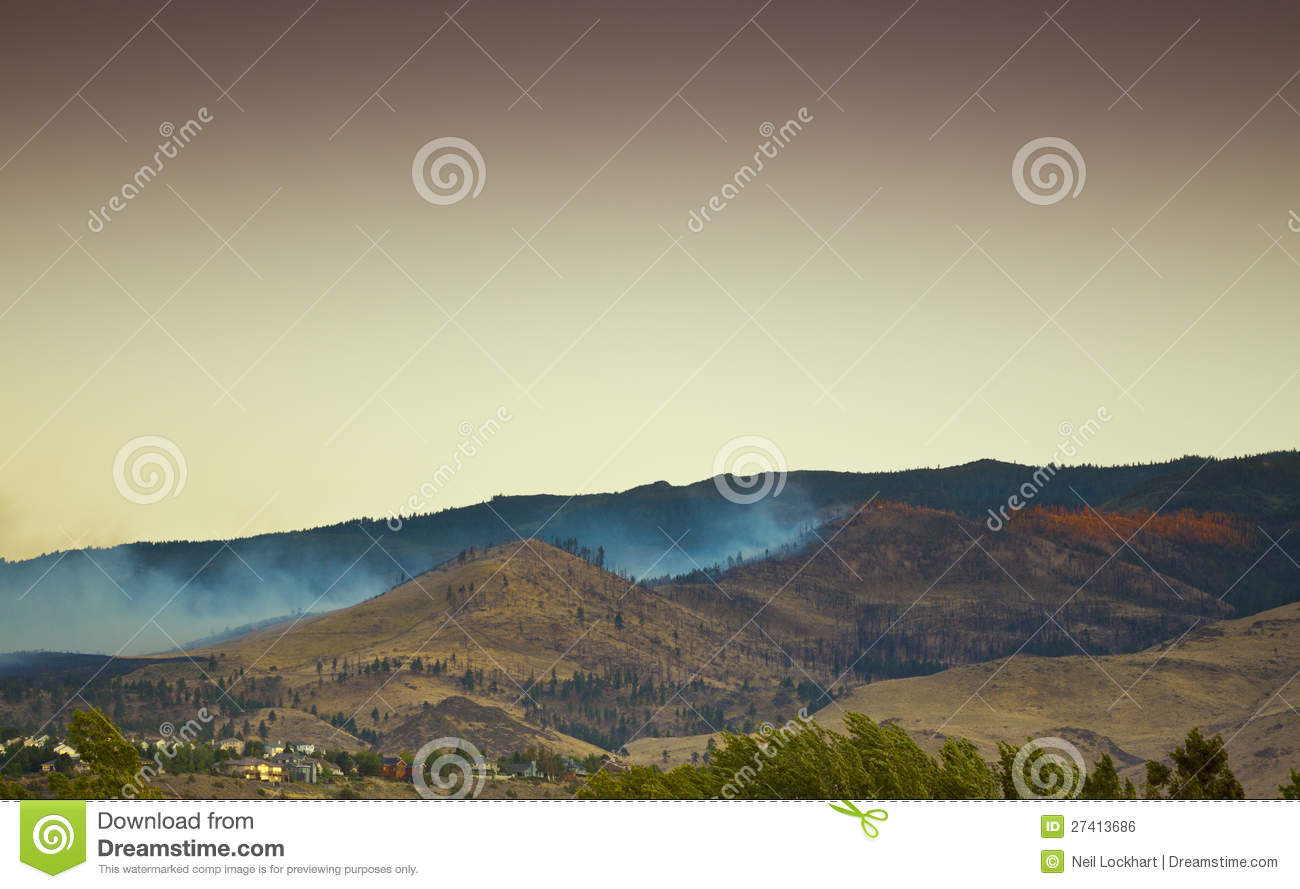 Extinguished Forest Fire
