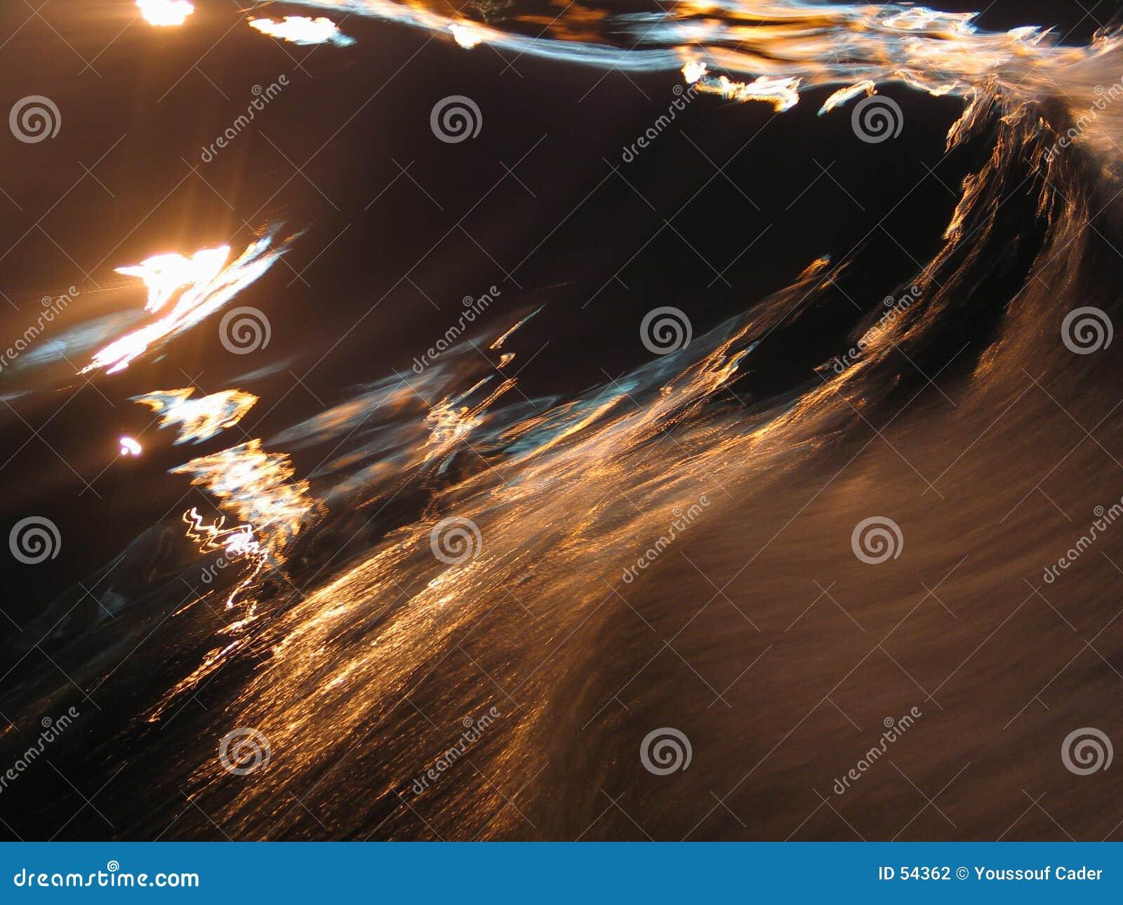 Extracto de la onda