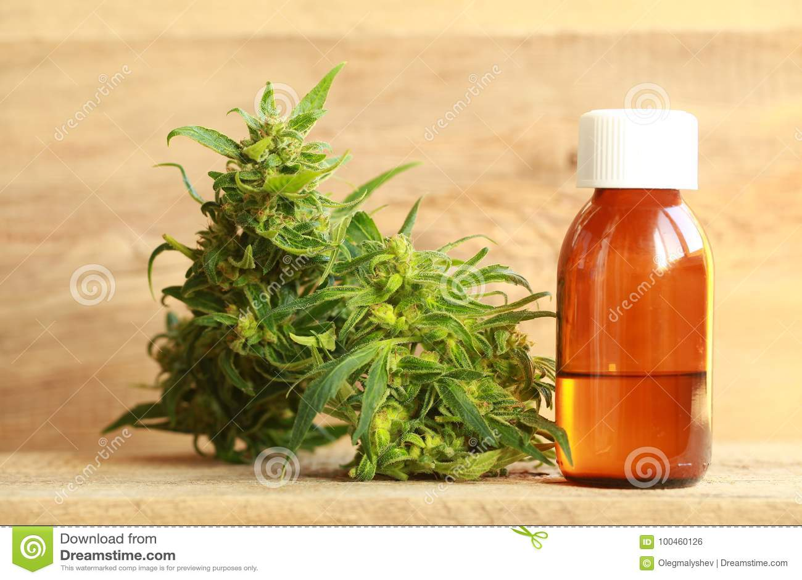 Extracto del aceite del cáñamo y planta médicos del cáñamo