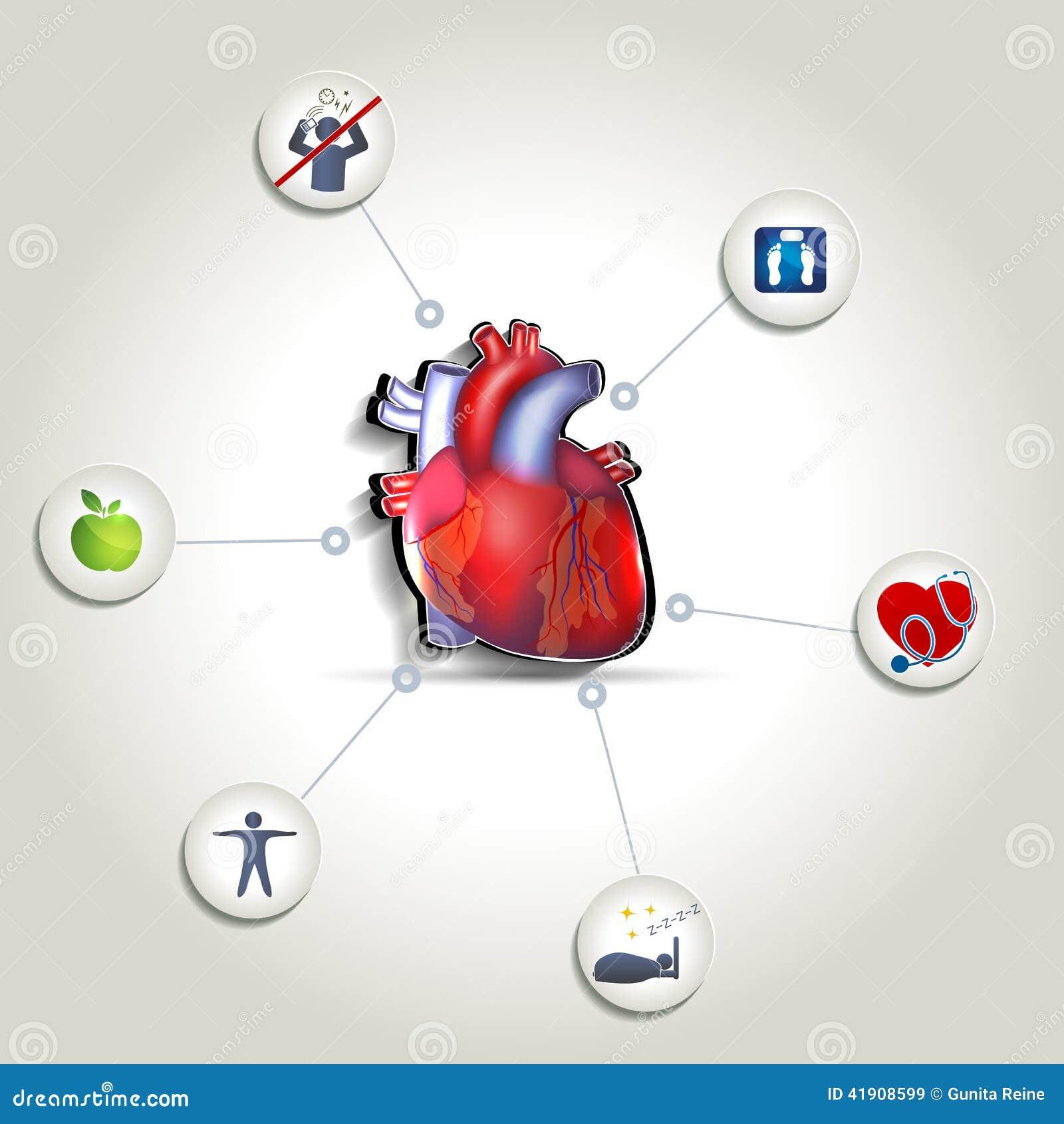 Extremidades sanas del cuidado del corazón