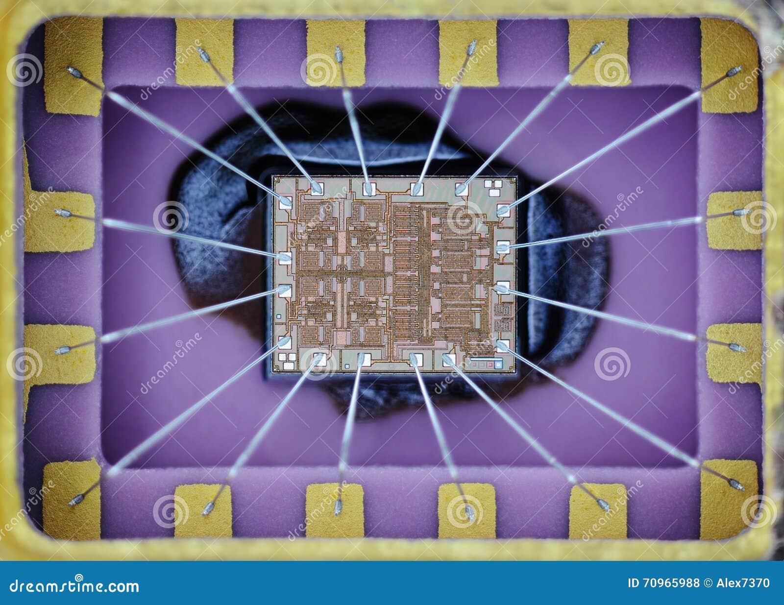 Extremo próximo acima da micro microplaqueta do silicone