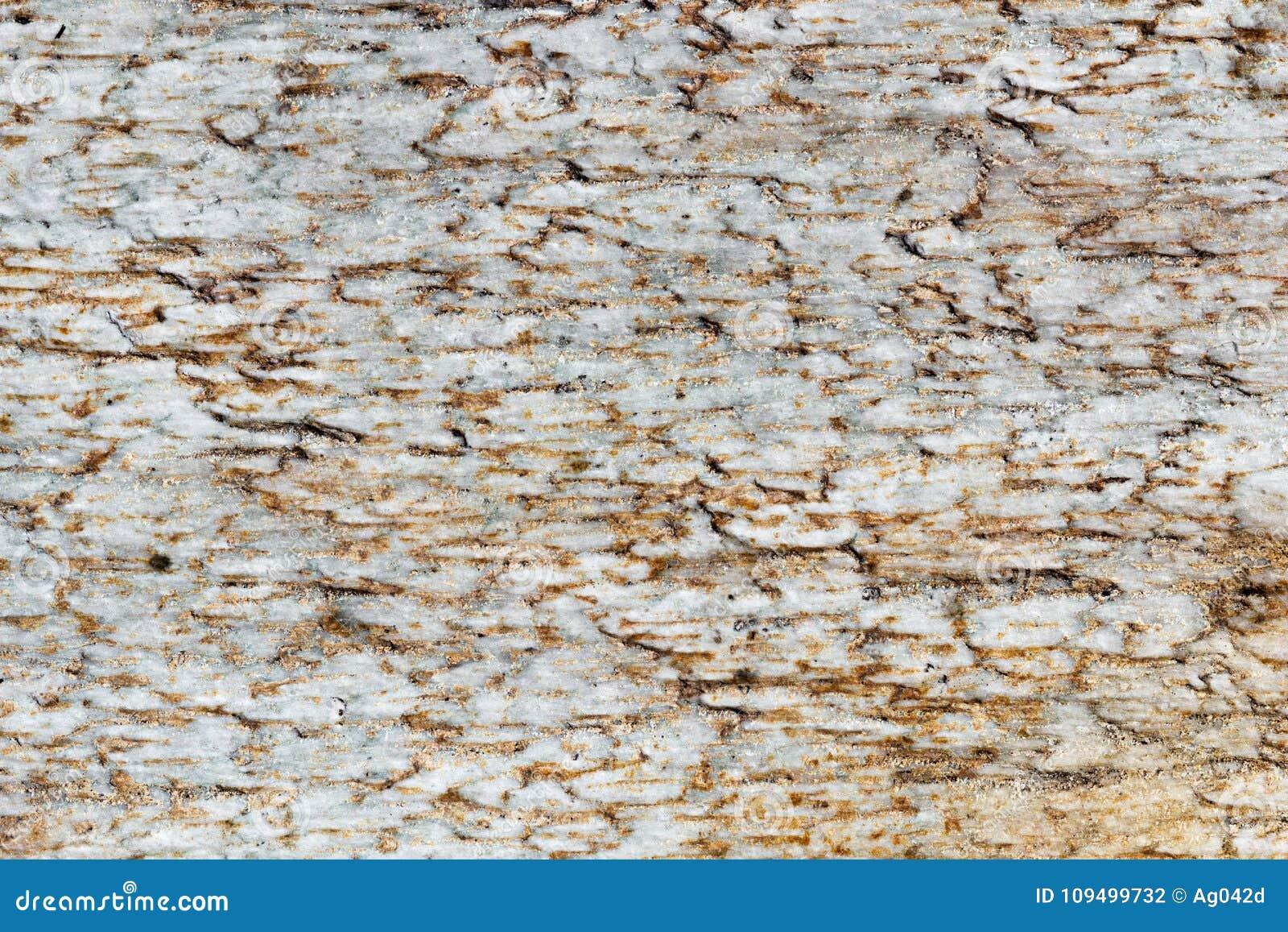 Exture bielu marmuru cegiełki z brown punktami, szczegółowa struktura kamień w naturalny wzorzystym dla tła i projekt,