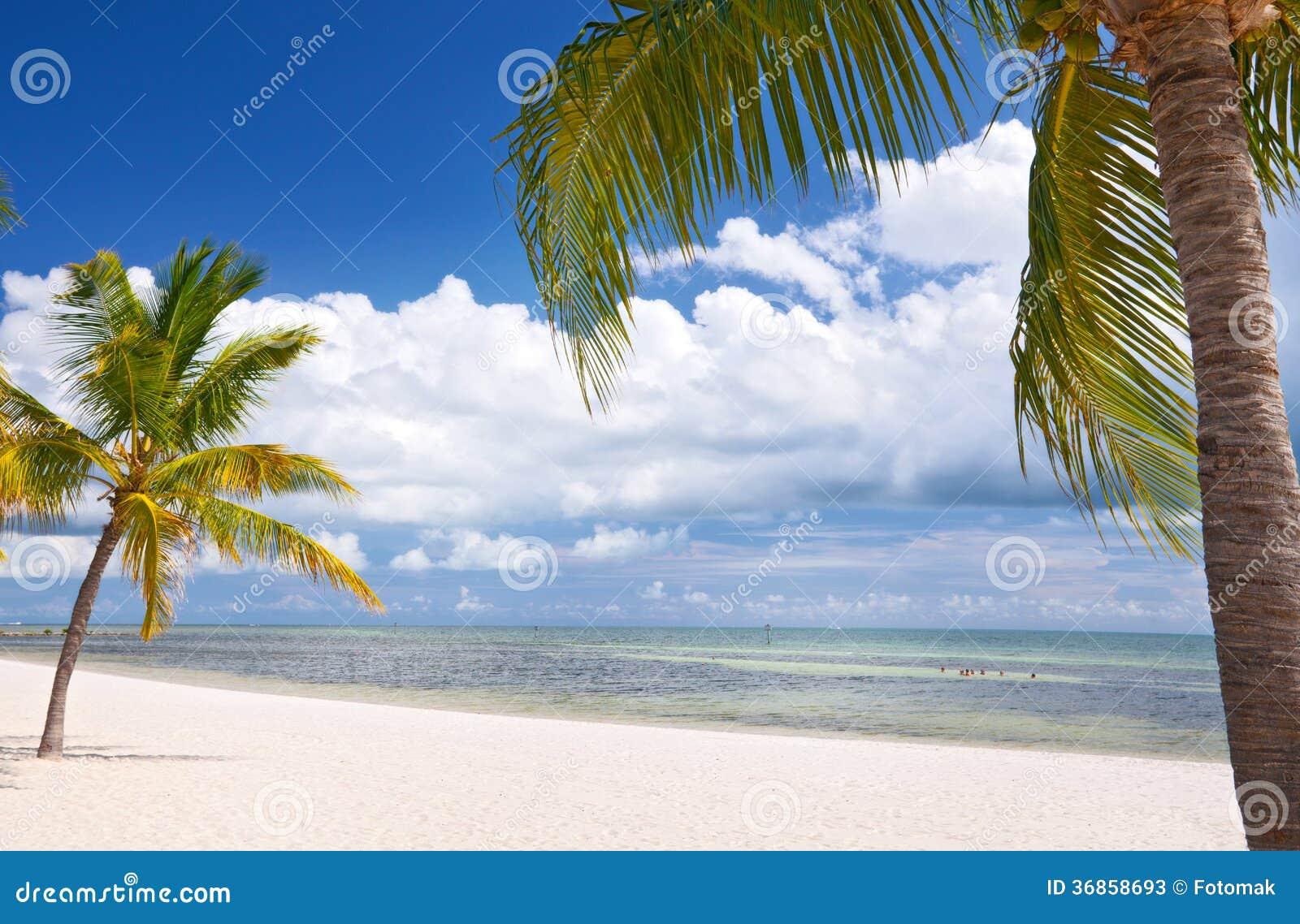 Ey la Floride occidentale, beau paysage de plage d été