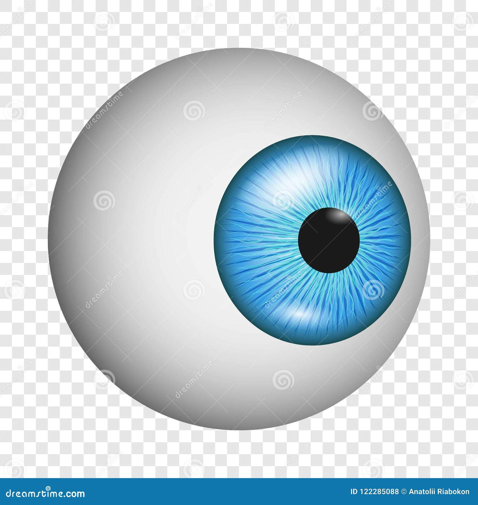Eye Anatomy Icon, Realistic Style Stock Vector - Illustration of ...