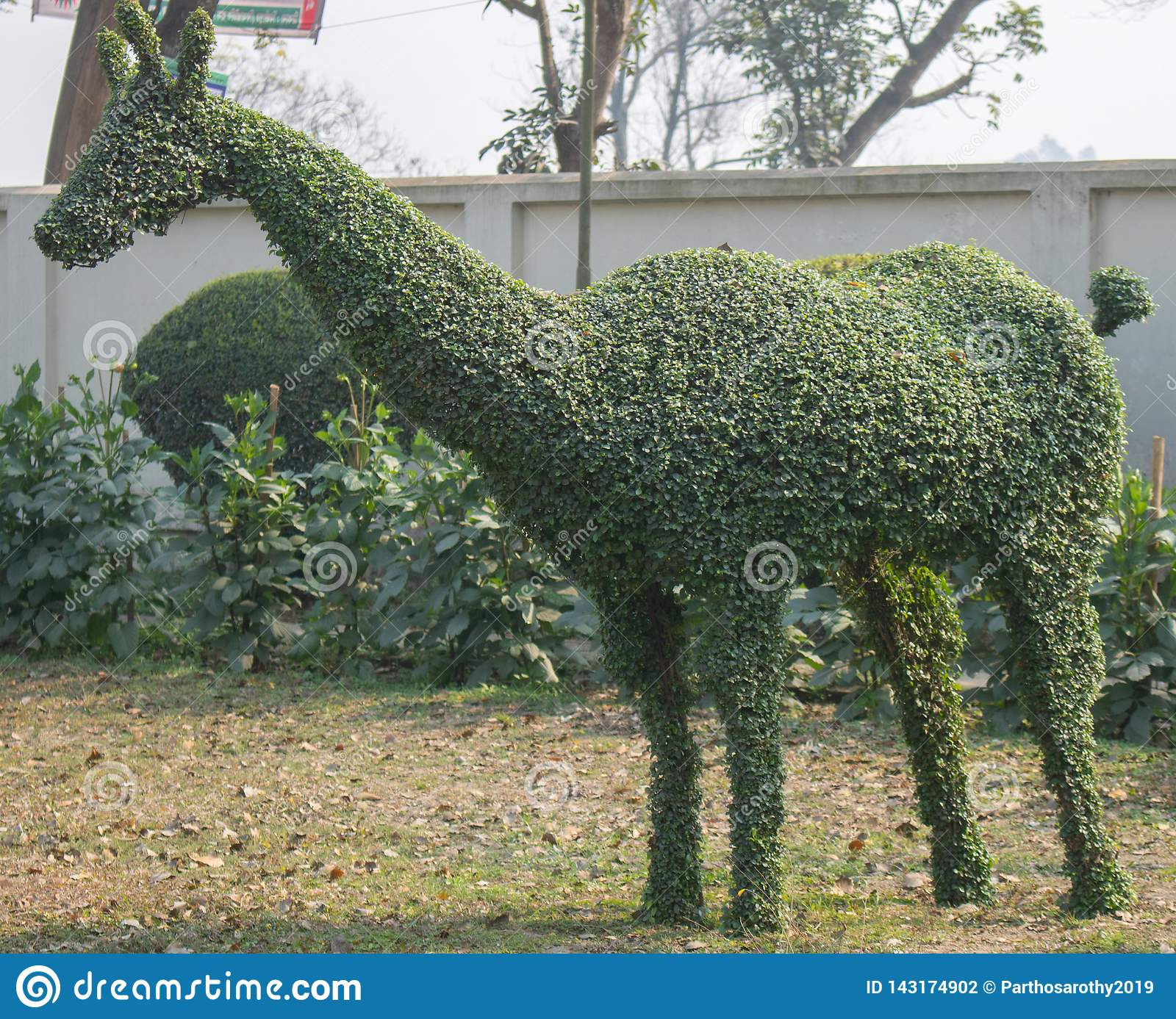 A eye catching green topiary of deer