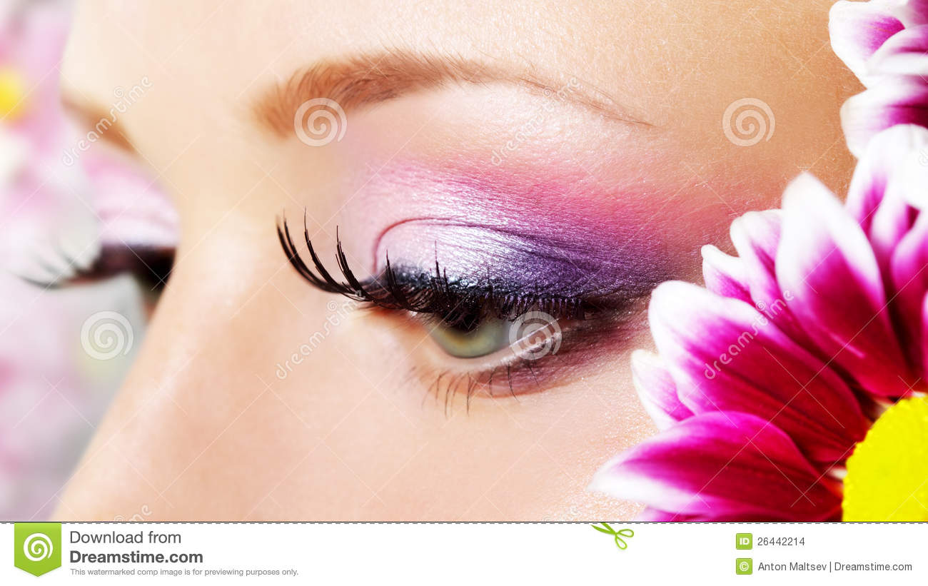 Eye Closeup With Makeup Stock Photo Image Of Flower 26442214