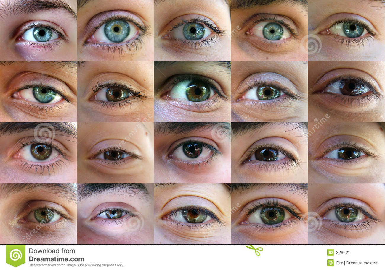 How To Read A House Plan Eye Eyes Many Eyes Stock Image Image 326621