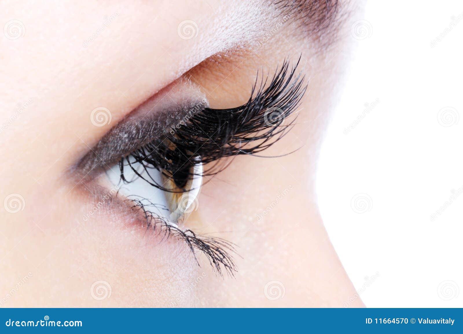 Eye With A Long Curl False Eyelashes Stock Photo - Image