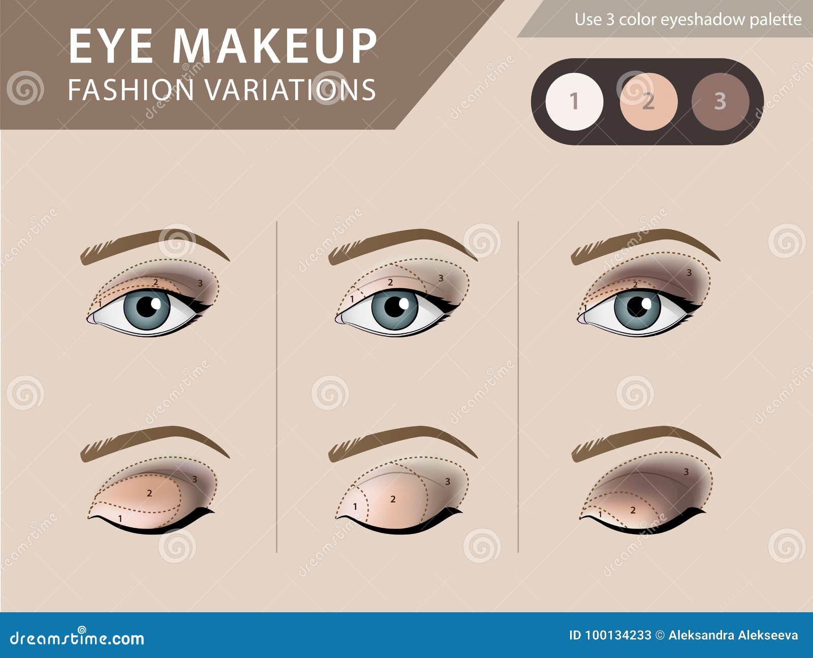 Eye Makeup Tutorial Eyeshadow Vector Template Stock Vector