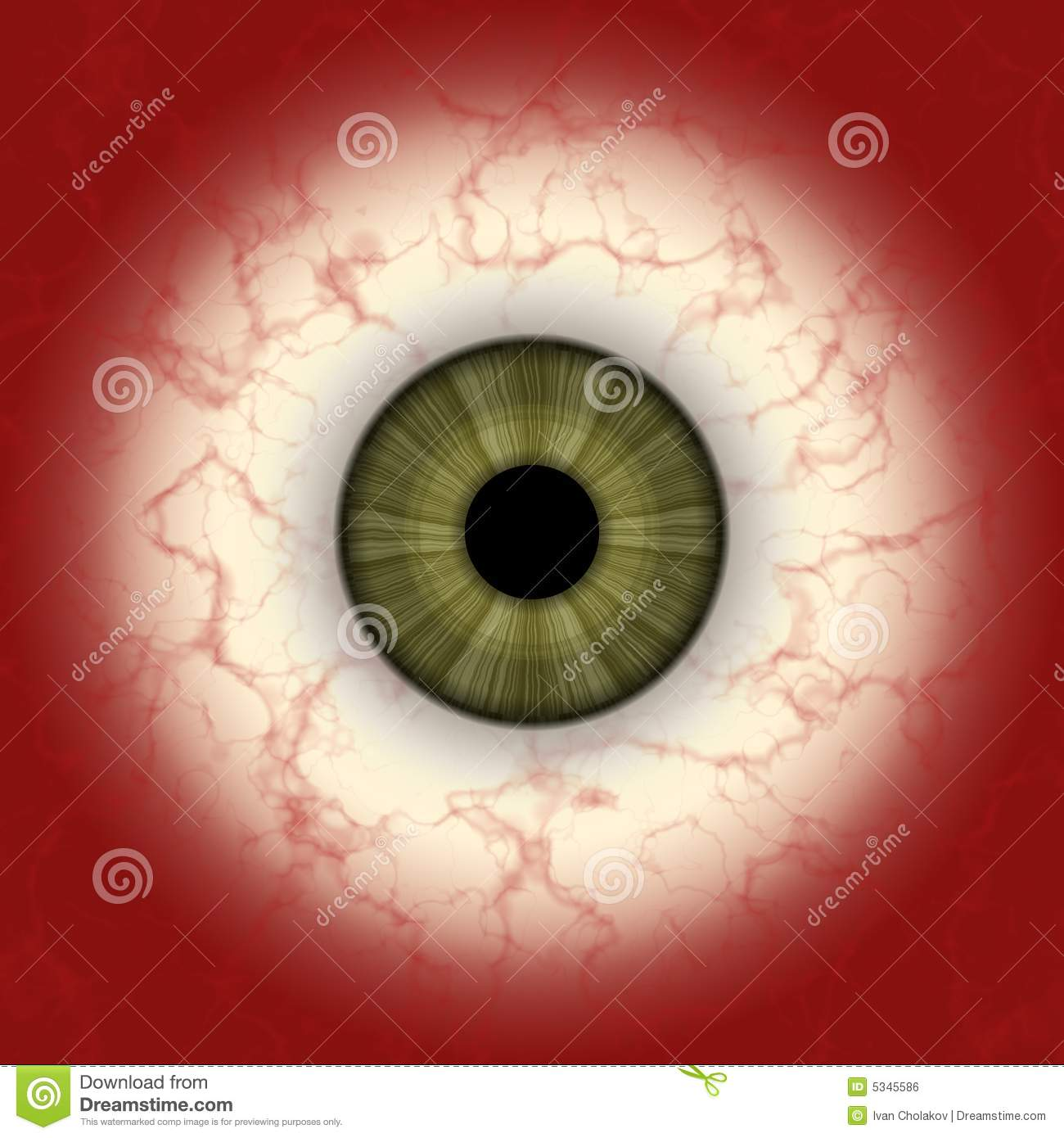 Maxresdefault as well Spherical Mirror besides A C C Ce D B Acd likewise Retina besides Tapetum. on human eye diagram