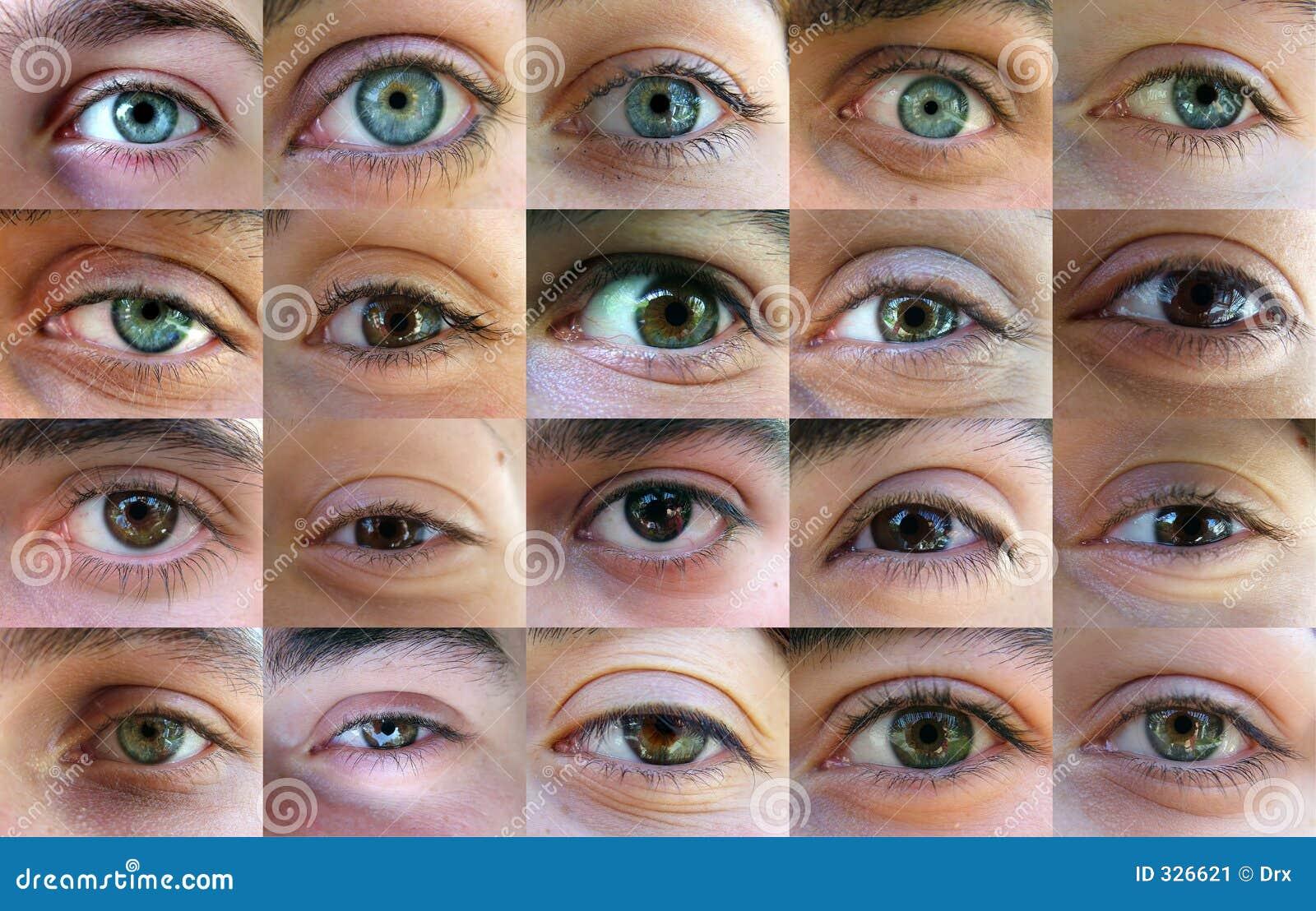 Eye, occhi - molti occhi