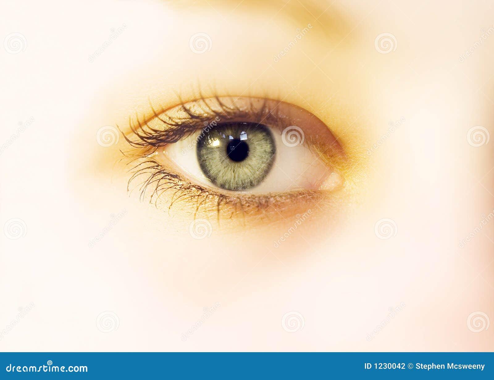 Squishy Eyeball : Eye soft stock photo. Image of glow, glamor, women, green - 1230042