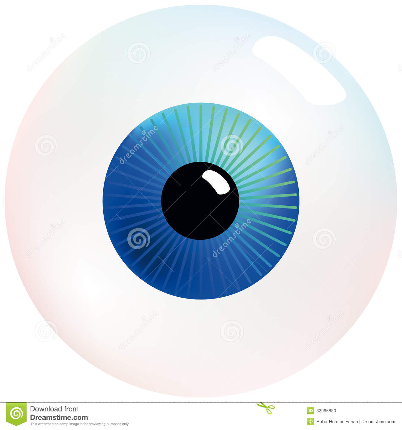 Eyeball Stock Photo Image 32966880
