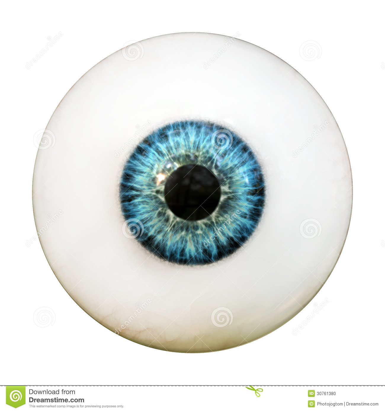 Eye Pictures 79