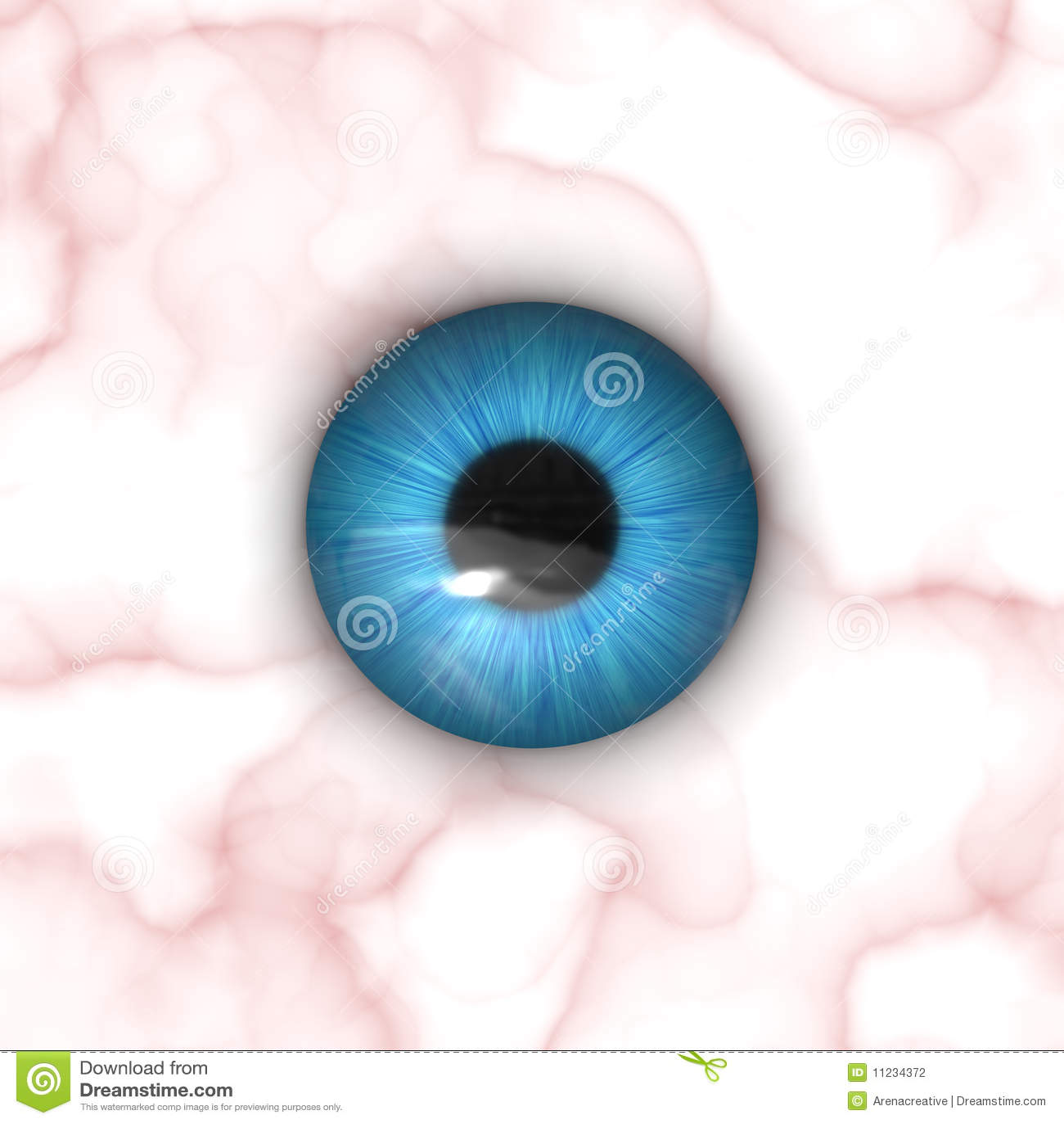 Human Eye Texture Map | www.pixshark.com - Images ...