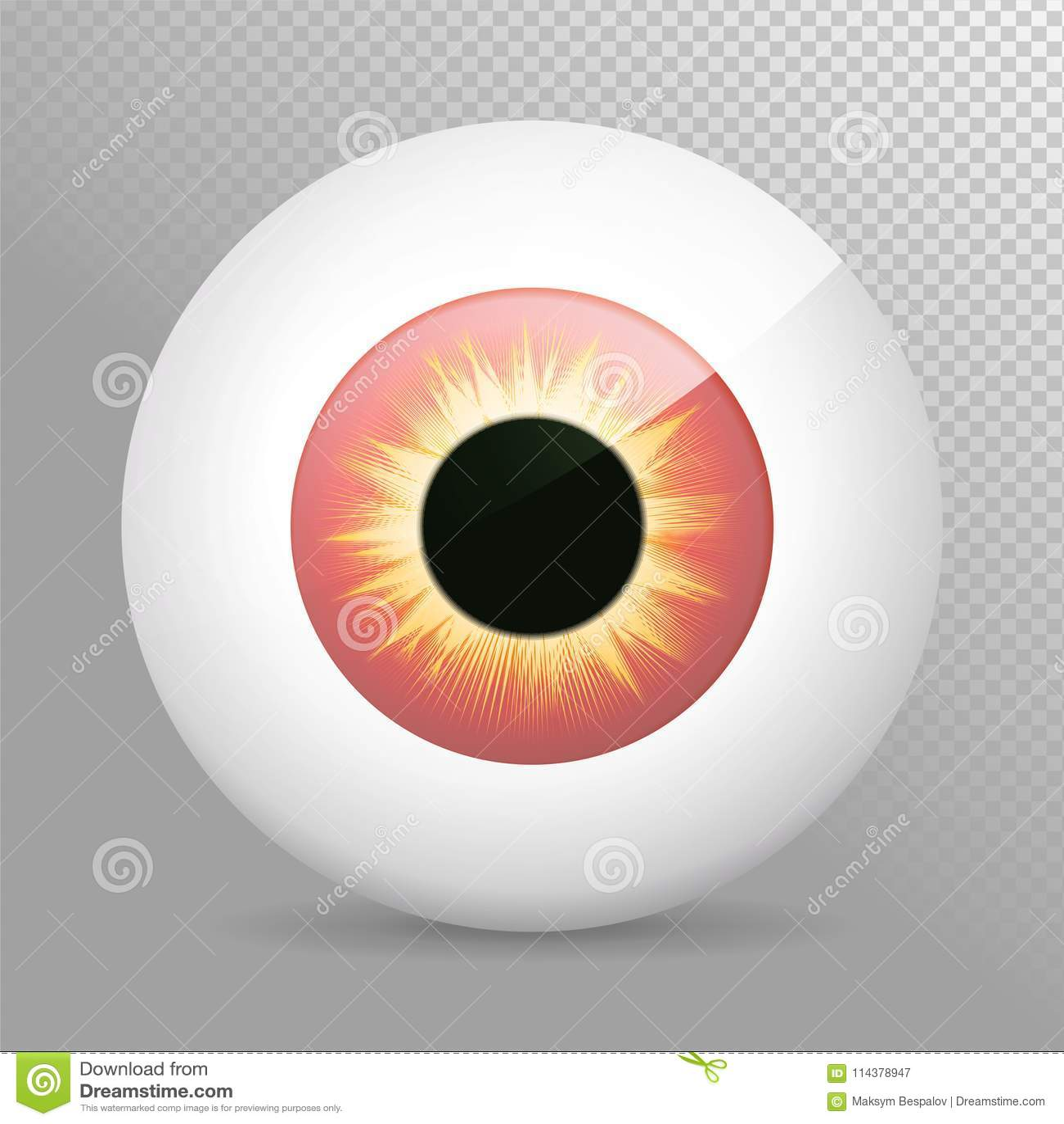 eyeballyelloweye red realistic 3d red eyeball vector illustration
