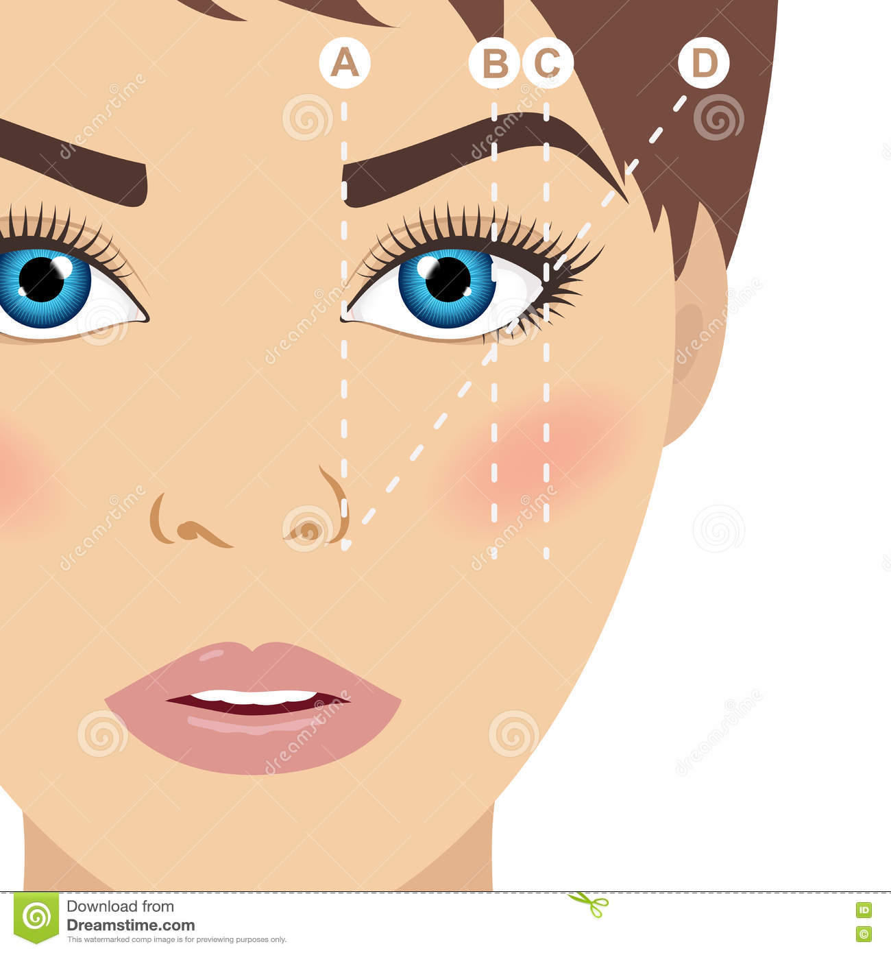 Eyebrow Scheme Trimming How To Shape Your Eyebrows Vector Ill