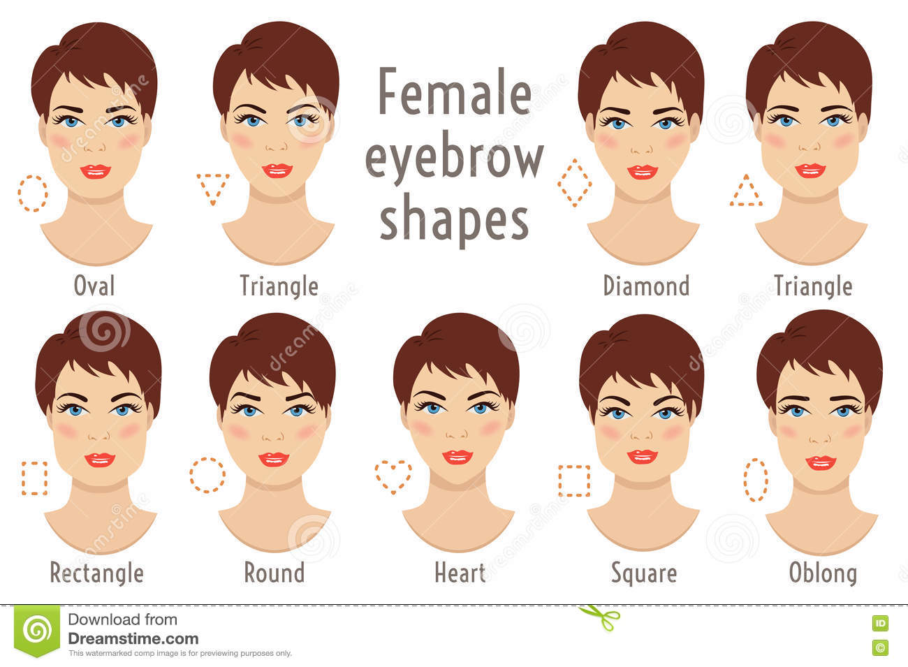 Eyebrow Shapes Suitable To Different Woman Type Face Vector Ill