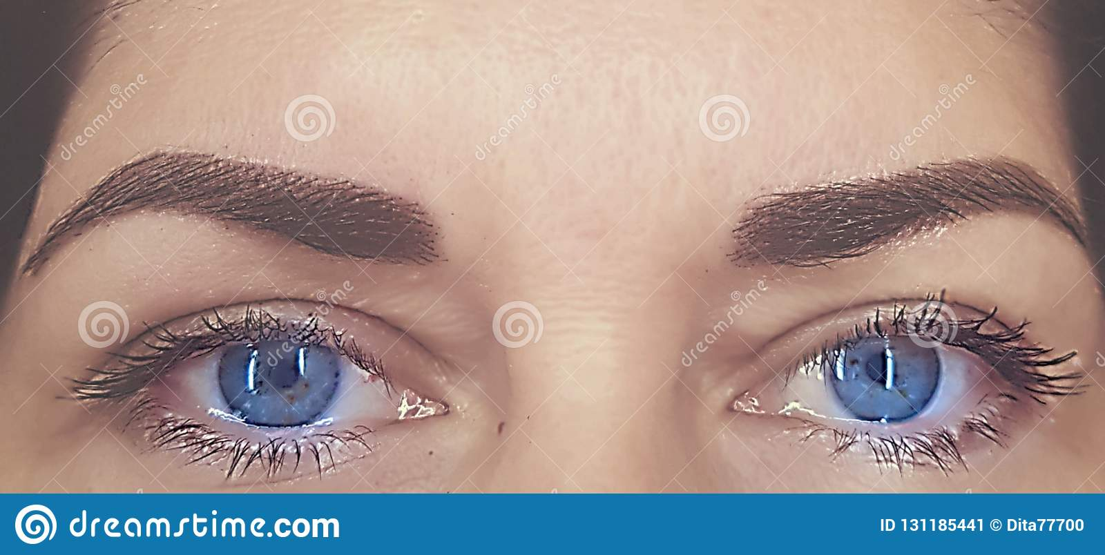 Eyebrows with correction and staining henna. Light day makeup. Clean and light skin. Blue eyes and natural eyelashes