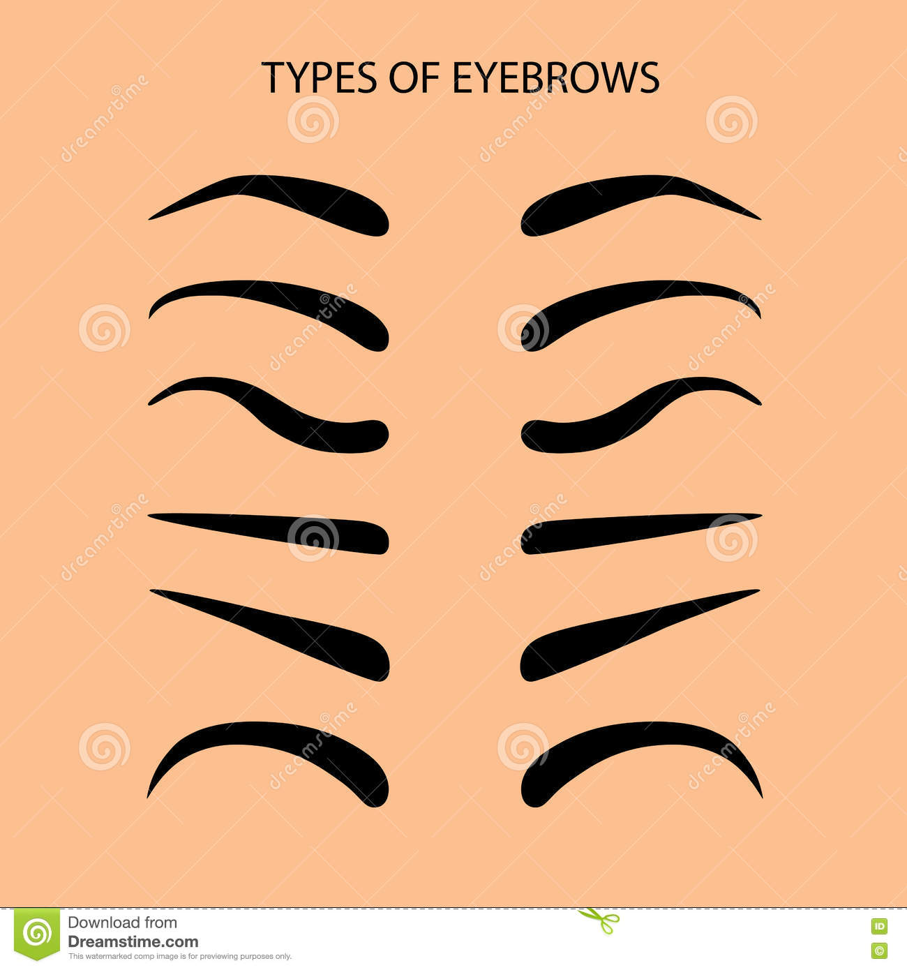 how to draw female eyebrows