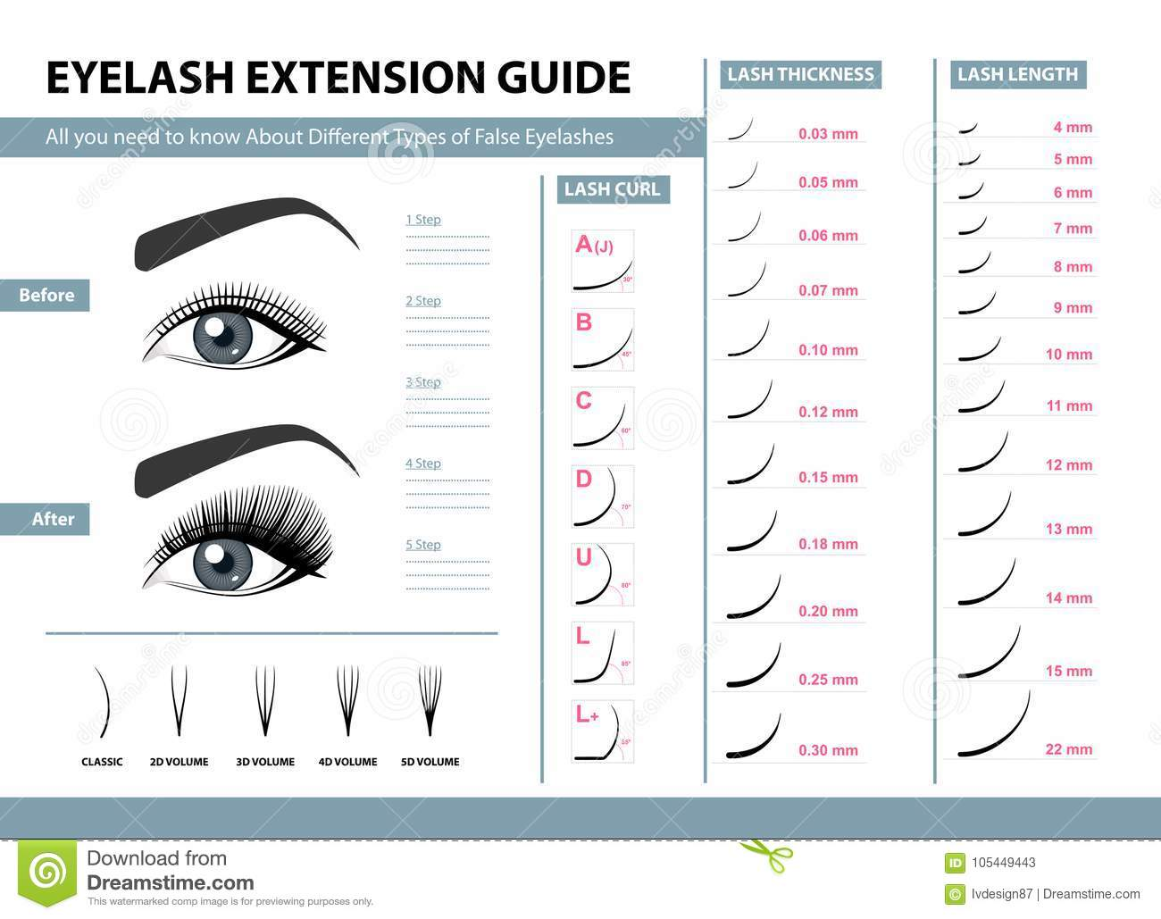 556c31ee705 Eyelash extension guide. Different Types of False Eyelashes. Infographic  vector illustration. Template for