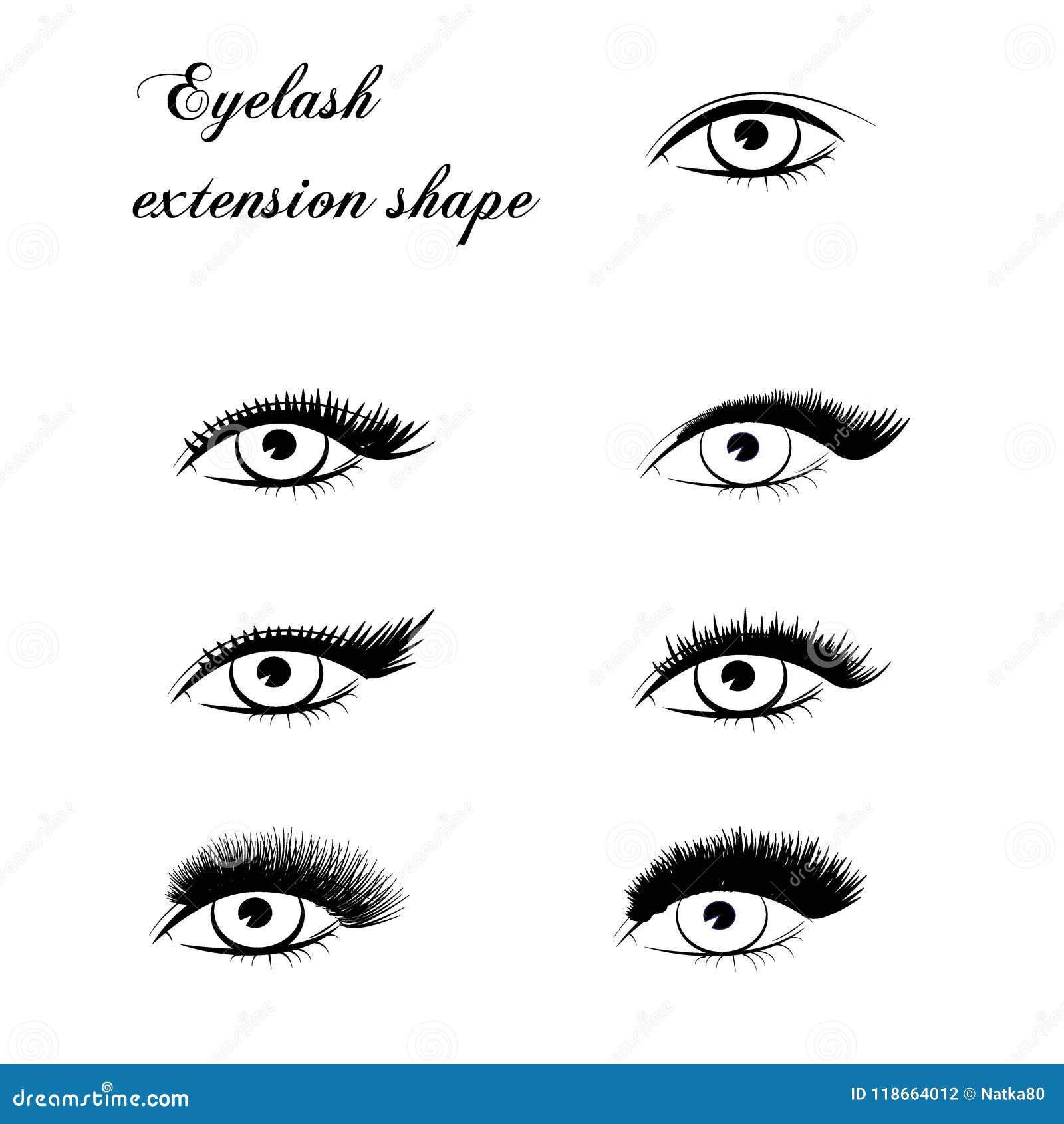 Eyelash extension shape stock vector. Illustration of ...