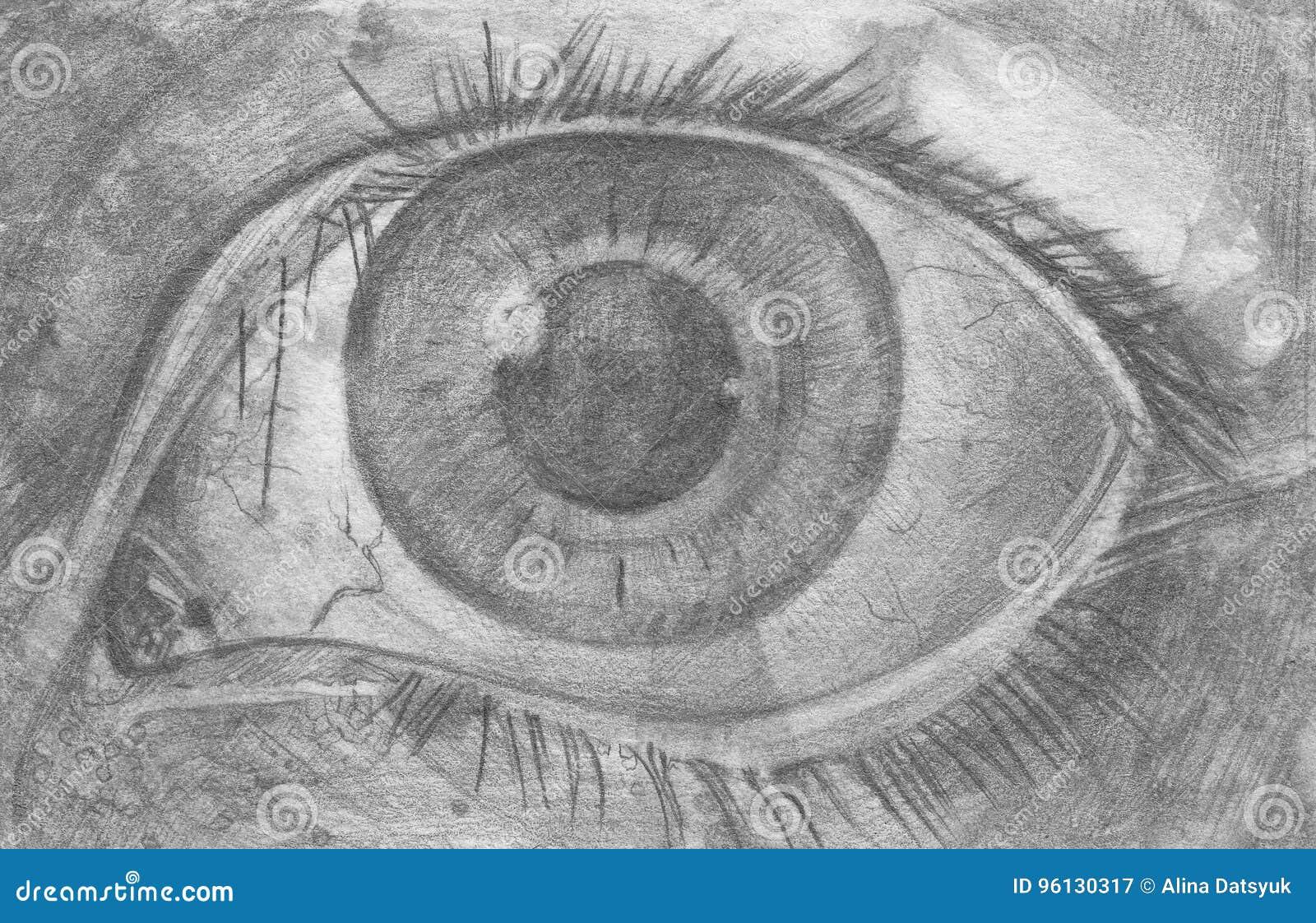 Eyes pencil sketch of eyes stock illustration illustration of
