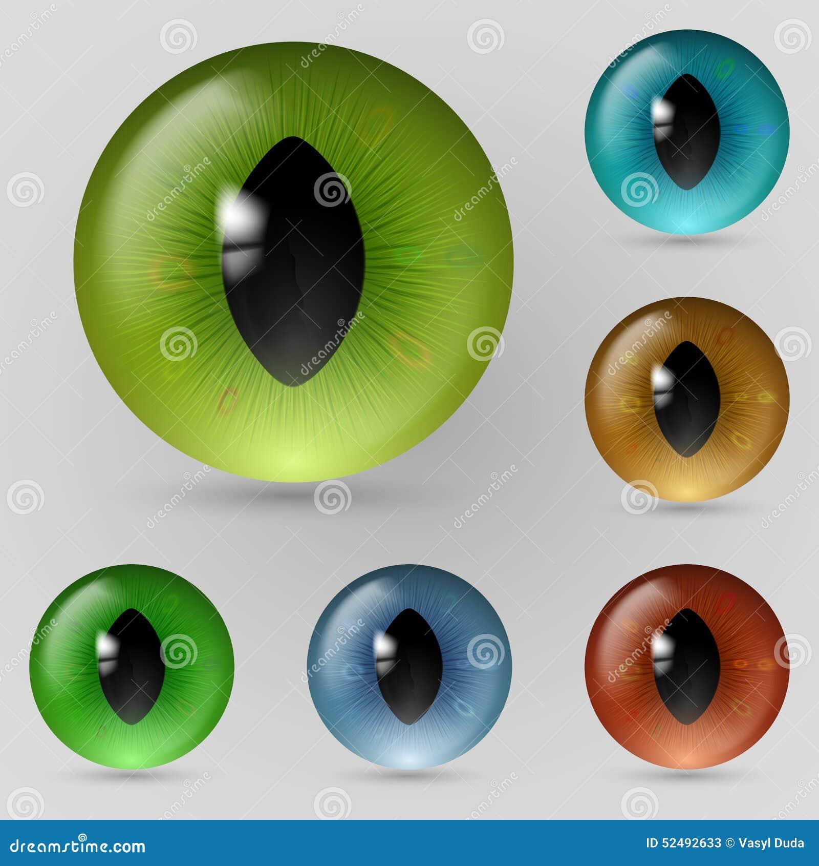 Eyes Reptiles Stock Vector Image Of Blue Dragon Bright