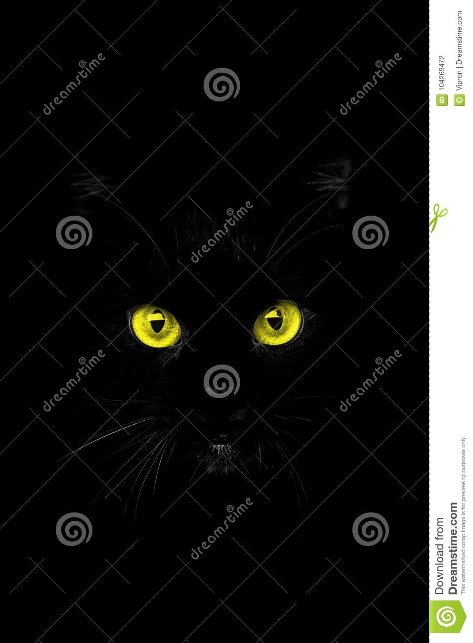 Download The eyes from the shadow stock photo. Image of black - 104269472
