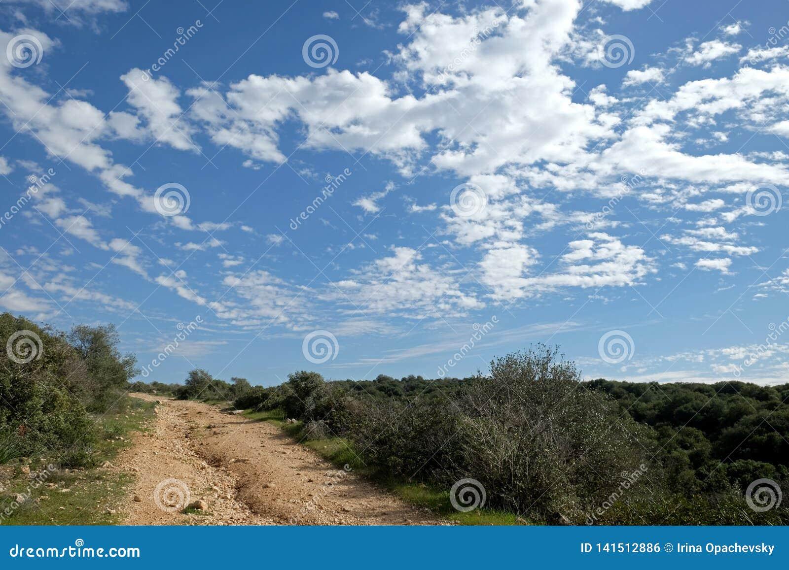 Fält, kullar och härlig himmel i Judea, Israel
