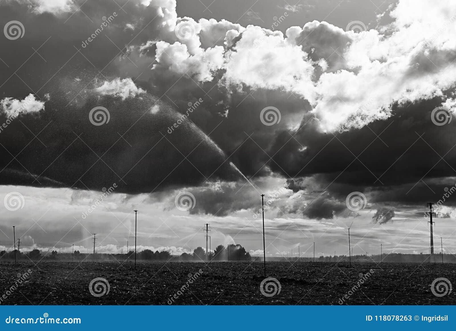 Fält med spridare molnig dag