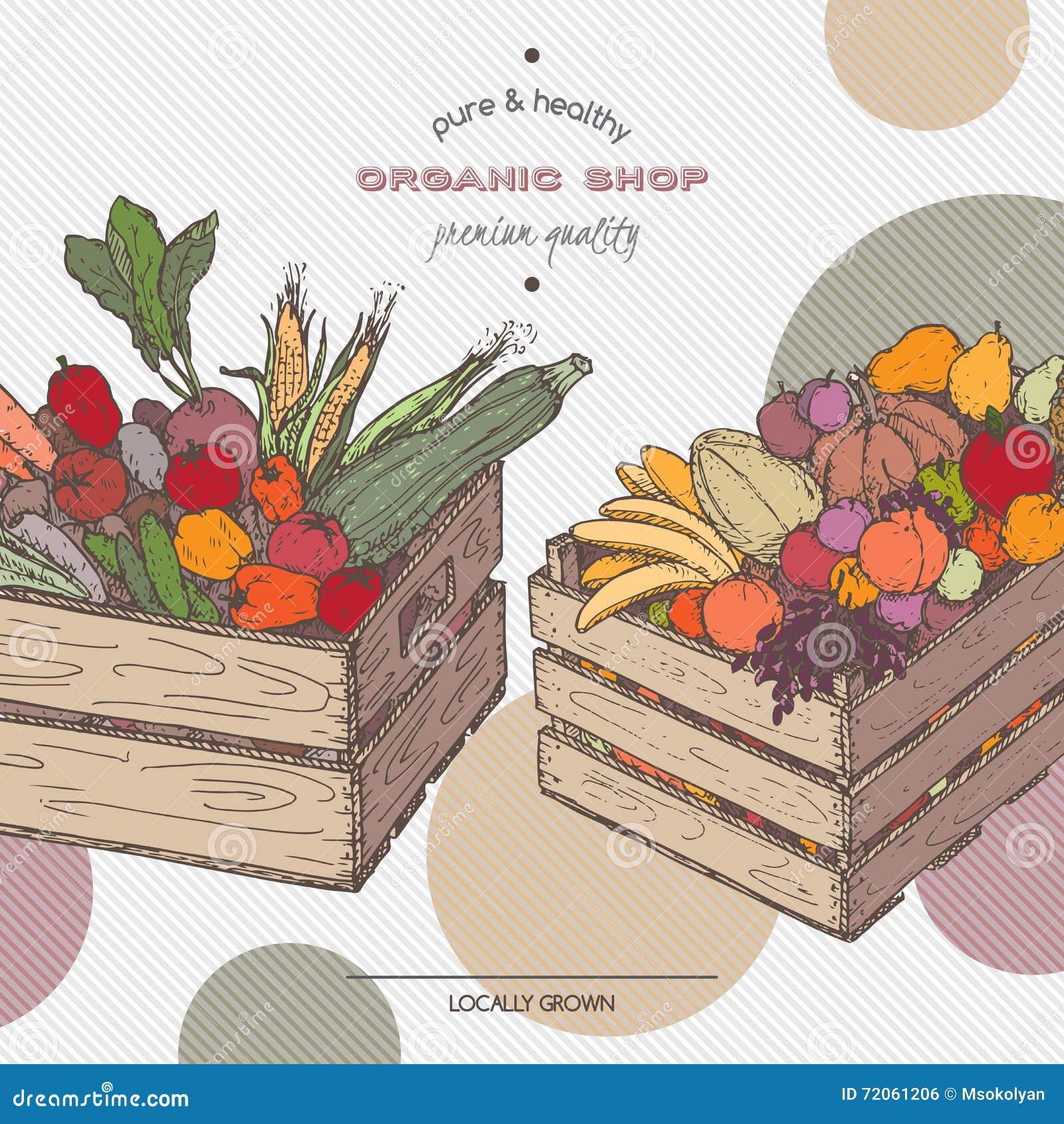 Färben Sie Organische Shopschablone Mit Früchten, Gemüse In Den ...