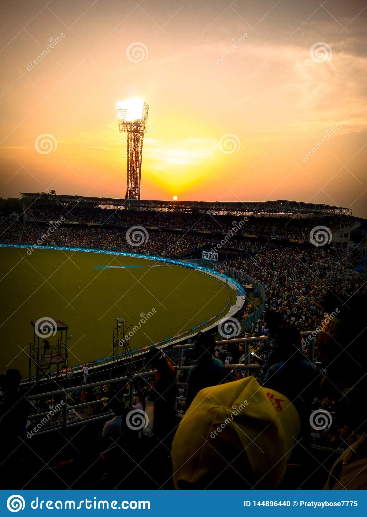 Färgen av whistlepoduen på KKR& x27; s-homegroundEden Garden stadion & x28; Vråla av Lion&en x27; s& x29;