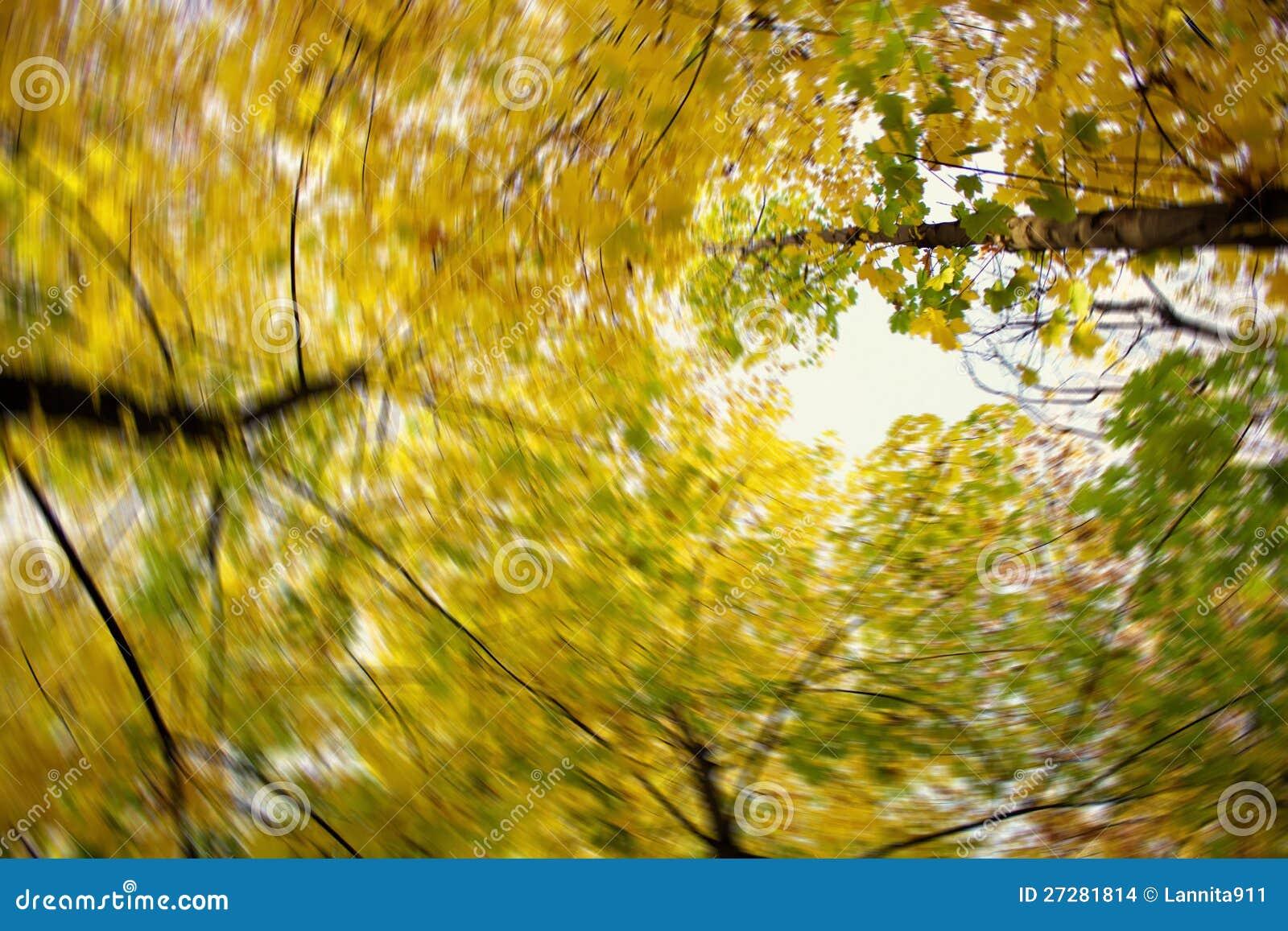 Färger av hösten