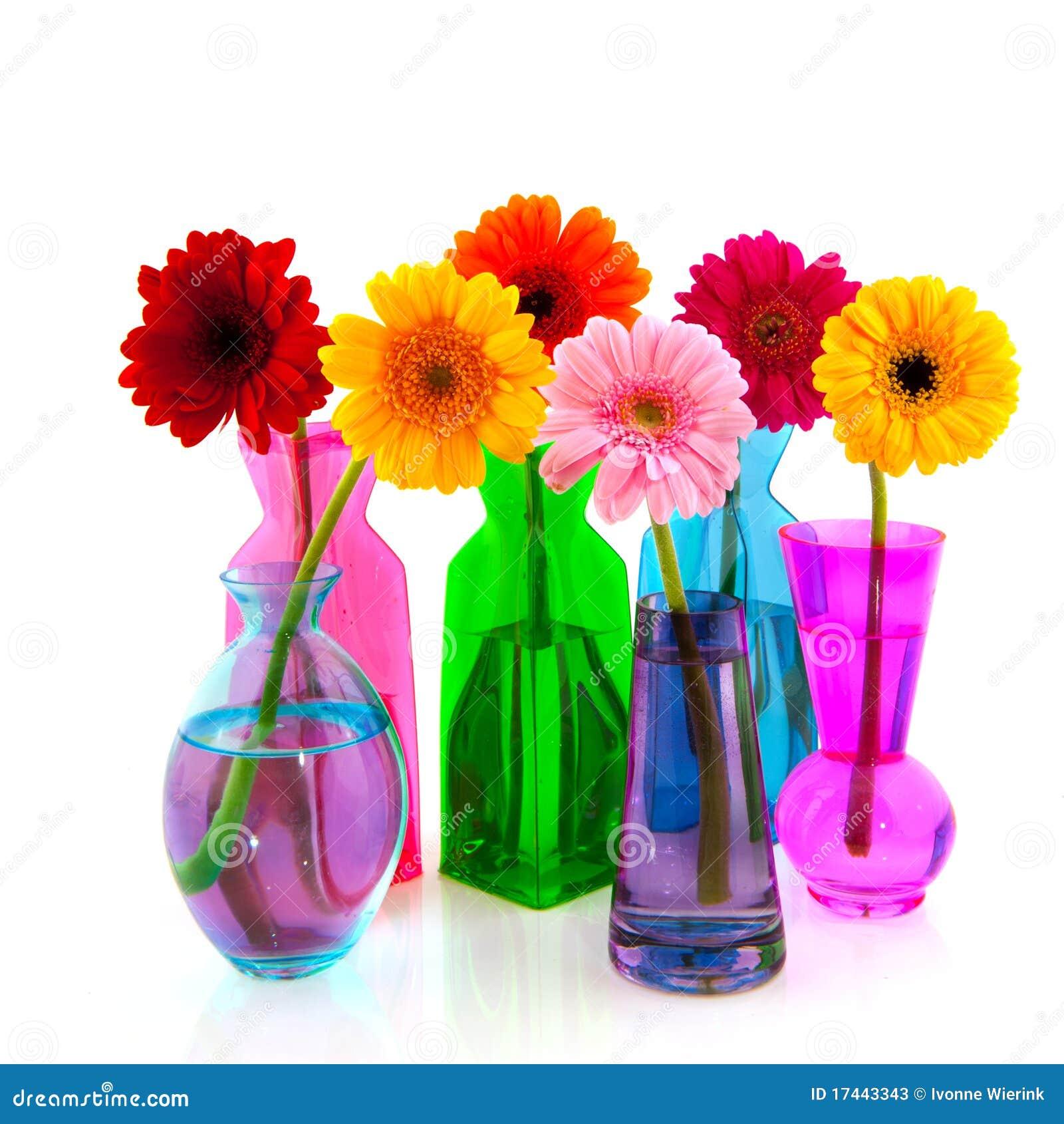 Färgrik blommagerber