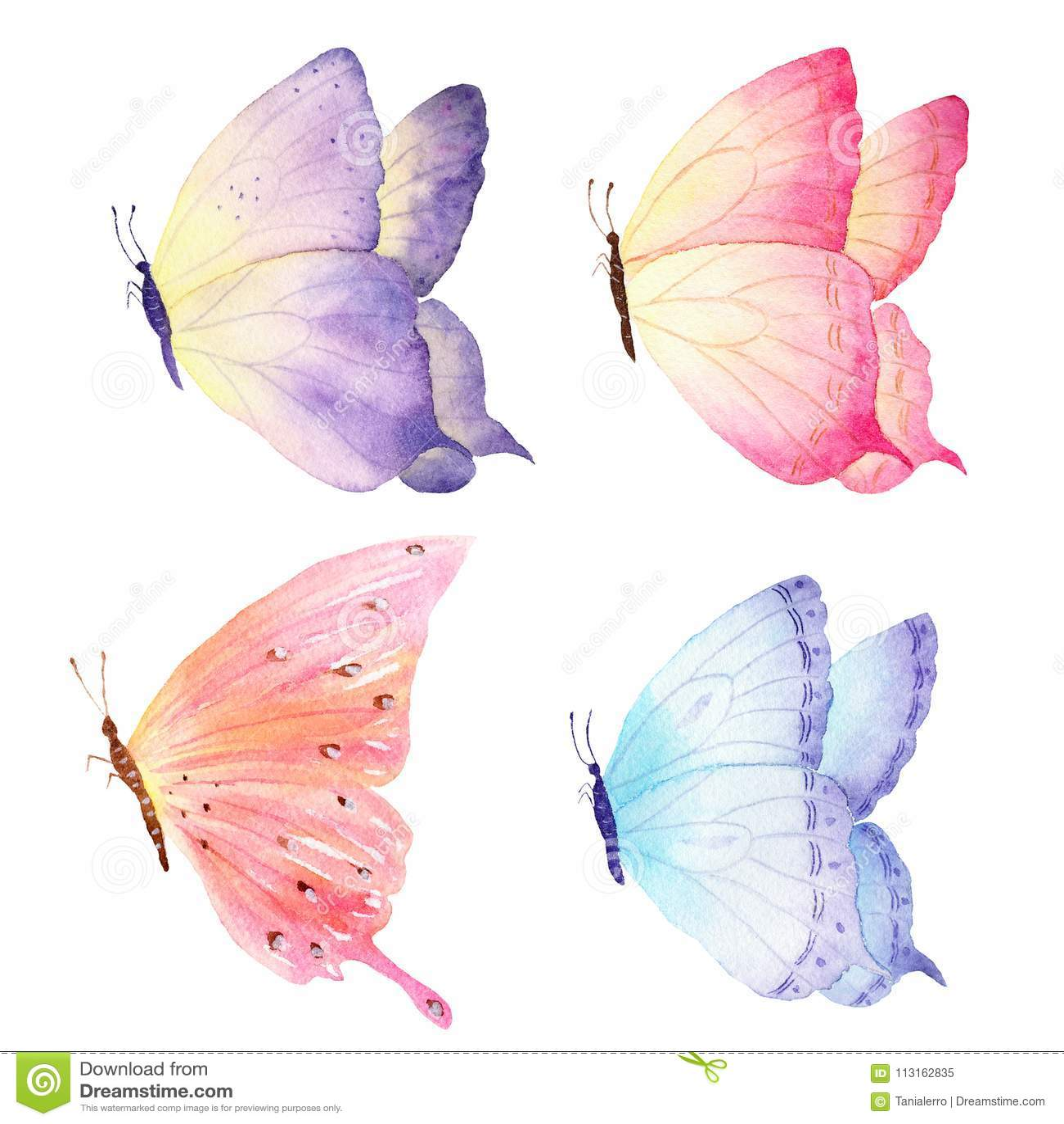 Färgrik hand dragen vattenfärgfjärilssamling Ideal för inbjudningar, kort, tapeter som skrivar ut på tyg