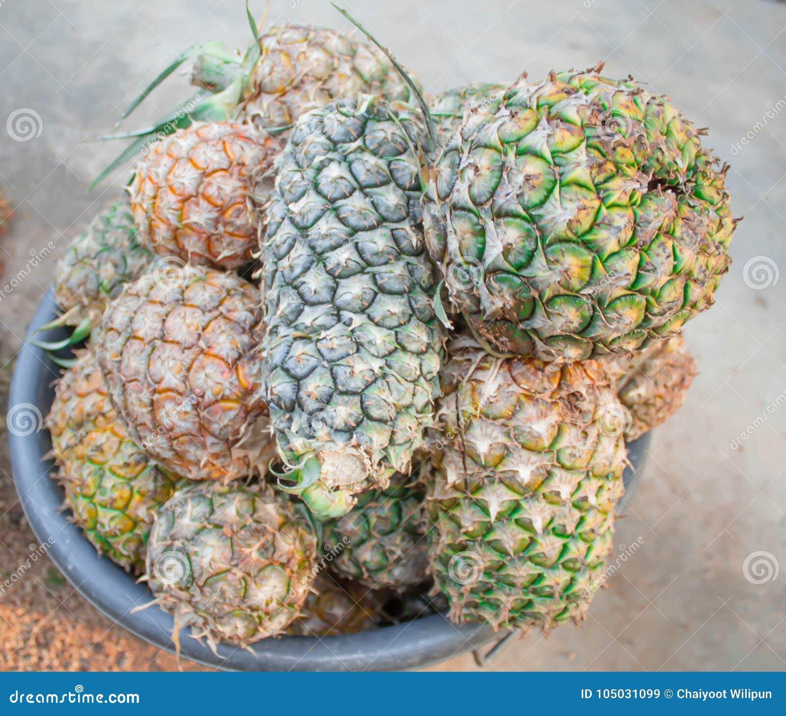 Färgrik mogen ananas i en korg