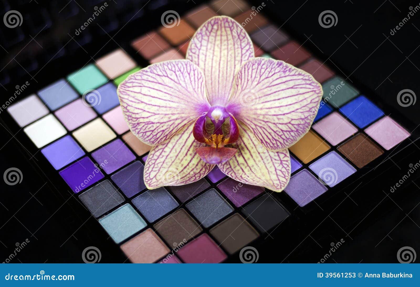 Färgrik palett för ögonskuggor