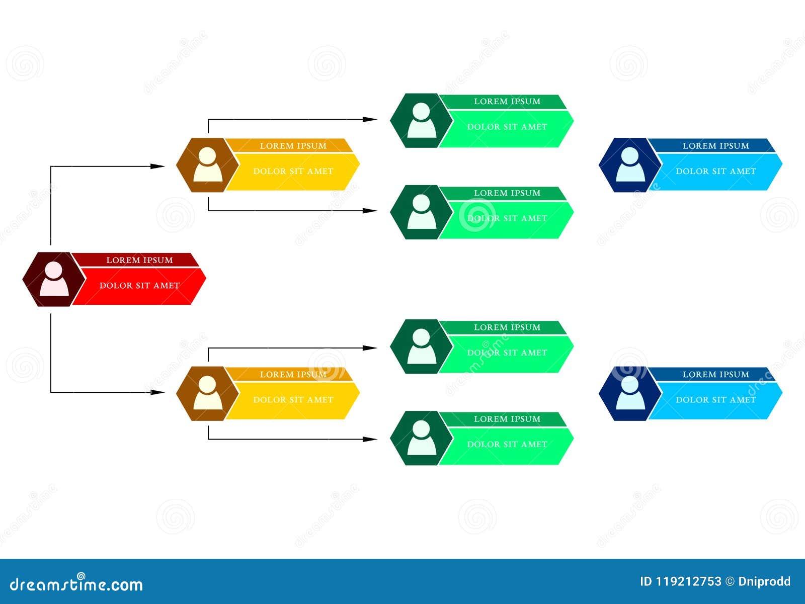 Färgrikt affärsstrukturbegrepp, intrig för diagram för företags organisation