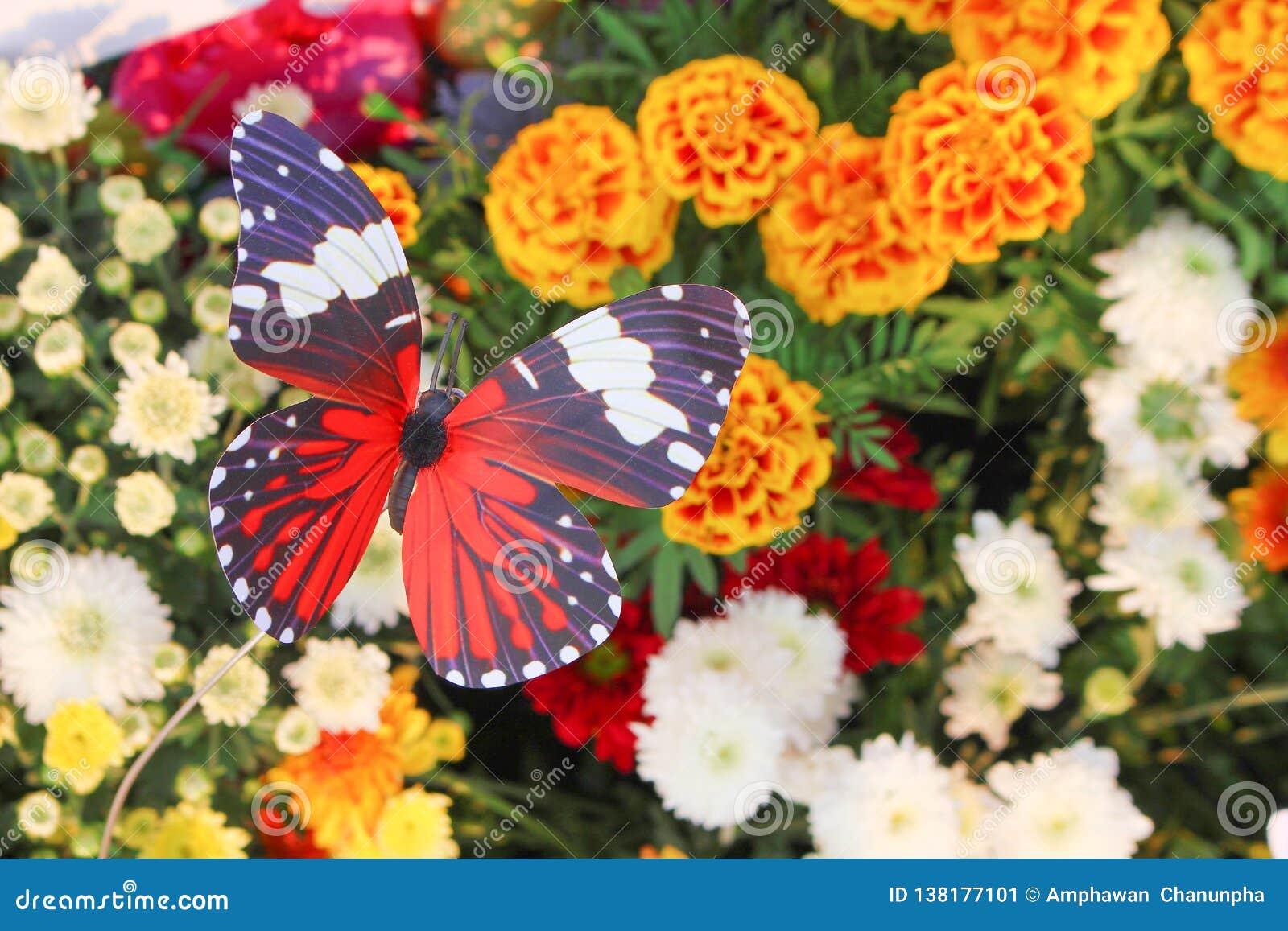 Färgrikt dekorativt konstgjort rött för bästa sikt med vita och svarta randiga fjärilsmodeller i trädgårdblommor som är naturliga