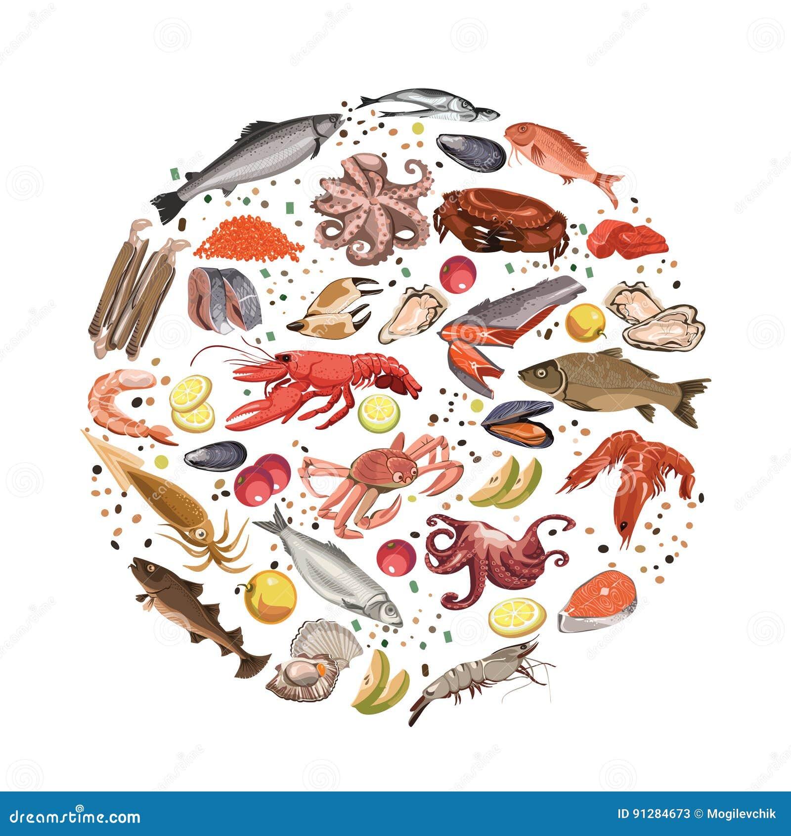 Färgrikt skissa det runda begreppet för havs- produkter