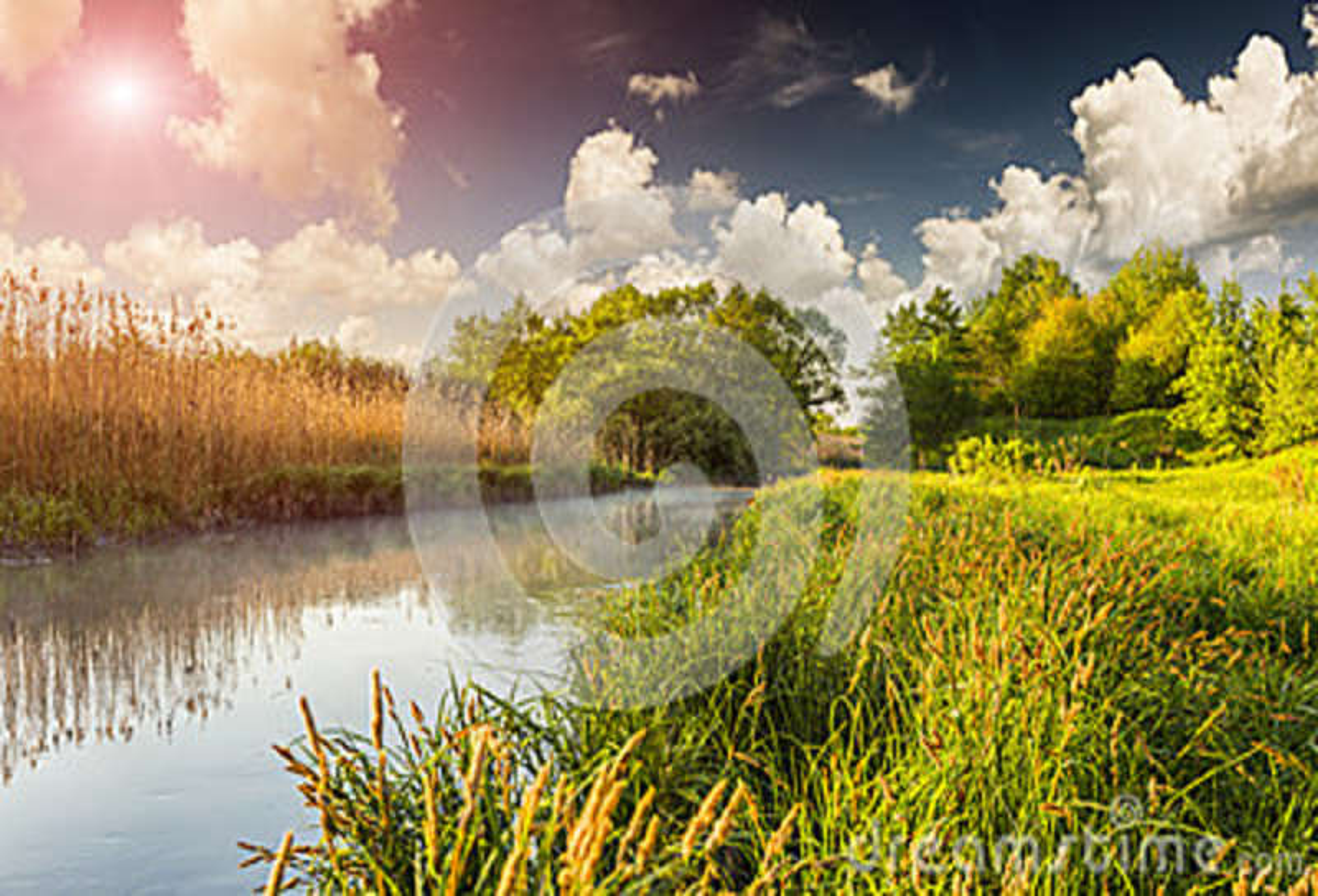 Färgrikt vårlandskap på den dimmiga floden