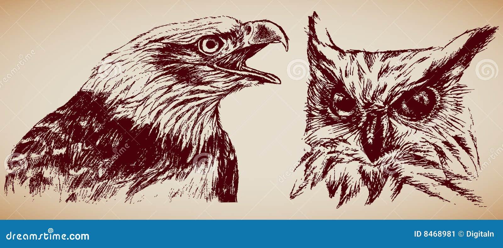 Fågelrov