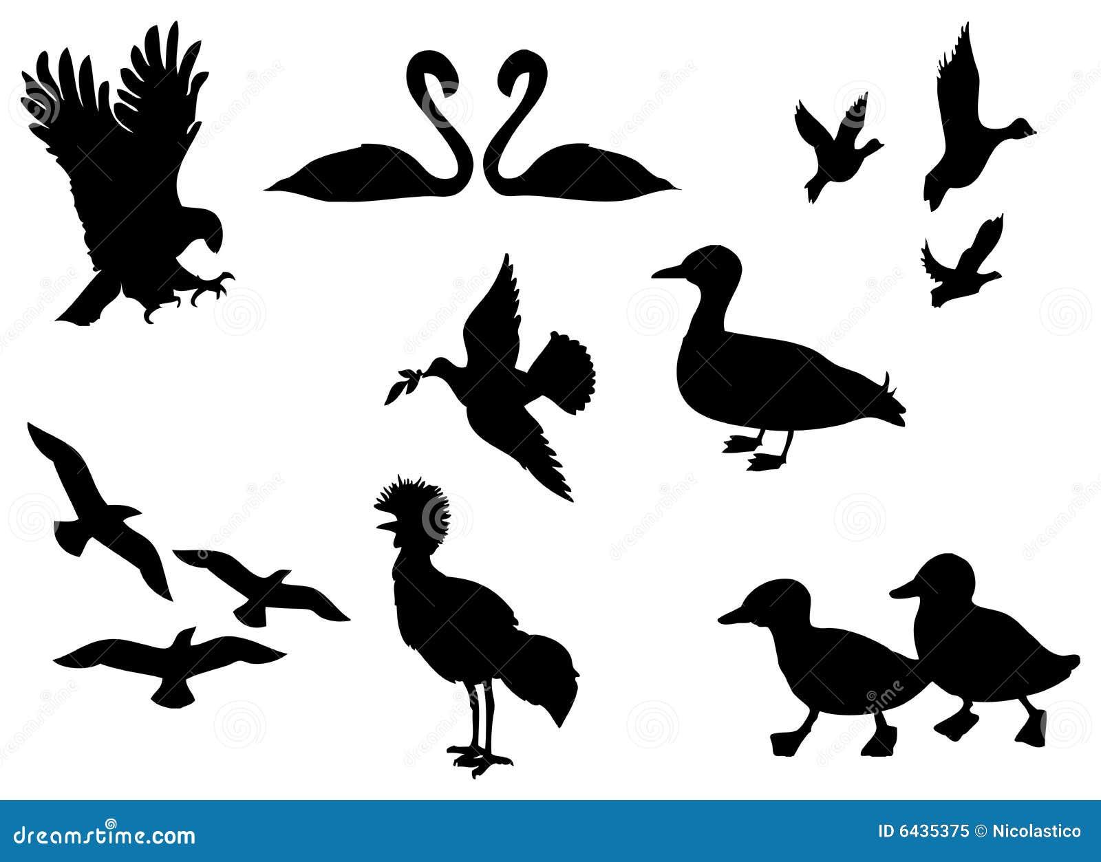 Fågelsilhouette