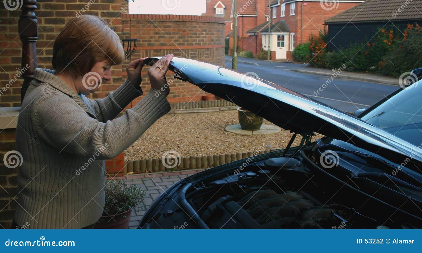 Fêmea 2 da manutenção do carro