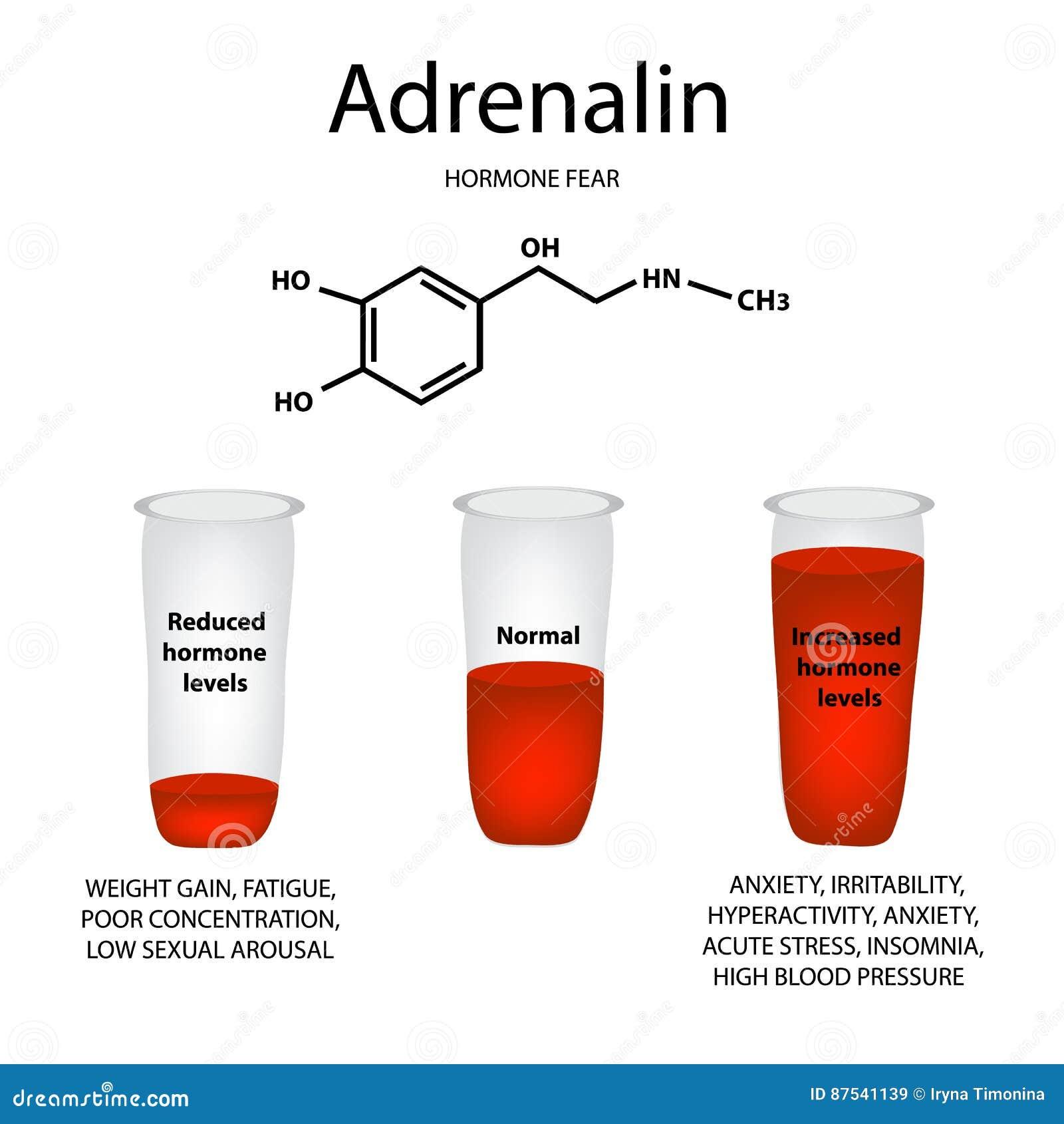 Fórmula Molecular Química De La Hormona De La Adrenalina
