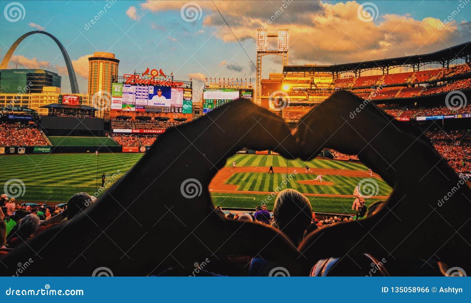 FÖRÄLSKELSE för huvudsaklig baseball