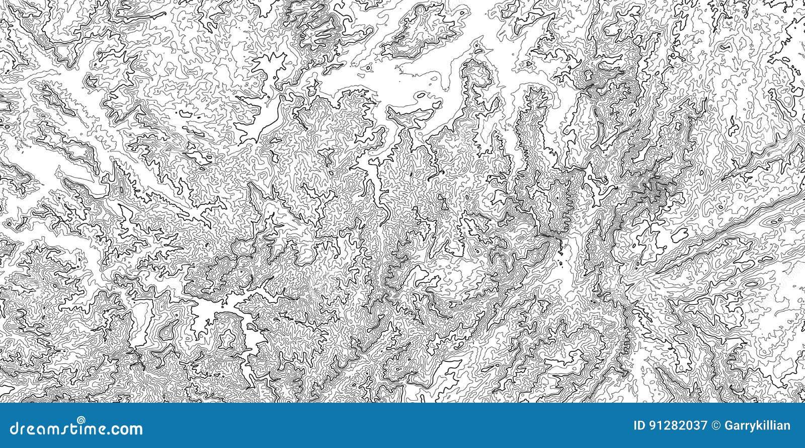 För gråtonjord för vektor abstrakt översikt för lättnad Frambragd begreppsmässig höjdöversikt Isolines av landskapyttersidahöjden