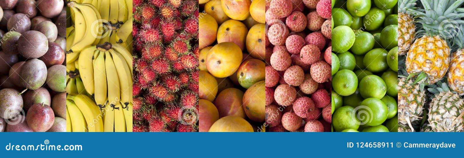 För matbaner för tropisk frukt bakgrund